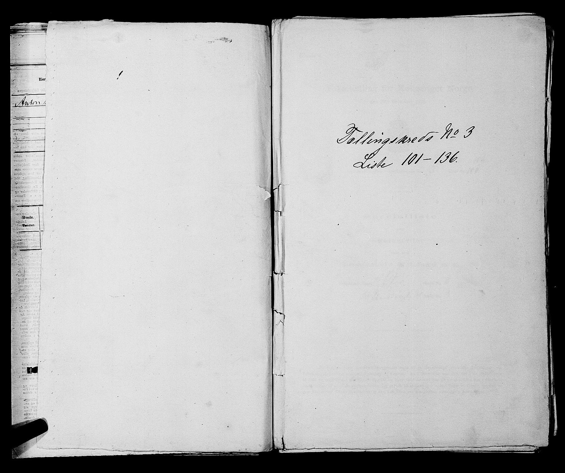 SAKO, Folketelling 1875 for 0703P Horten prestegjeld, 1875, s. 247