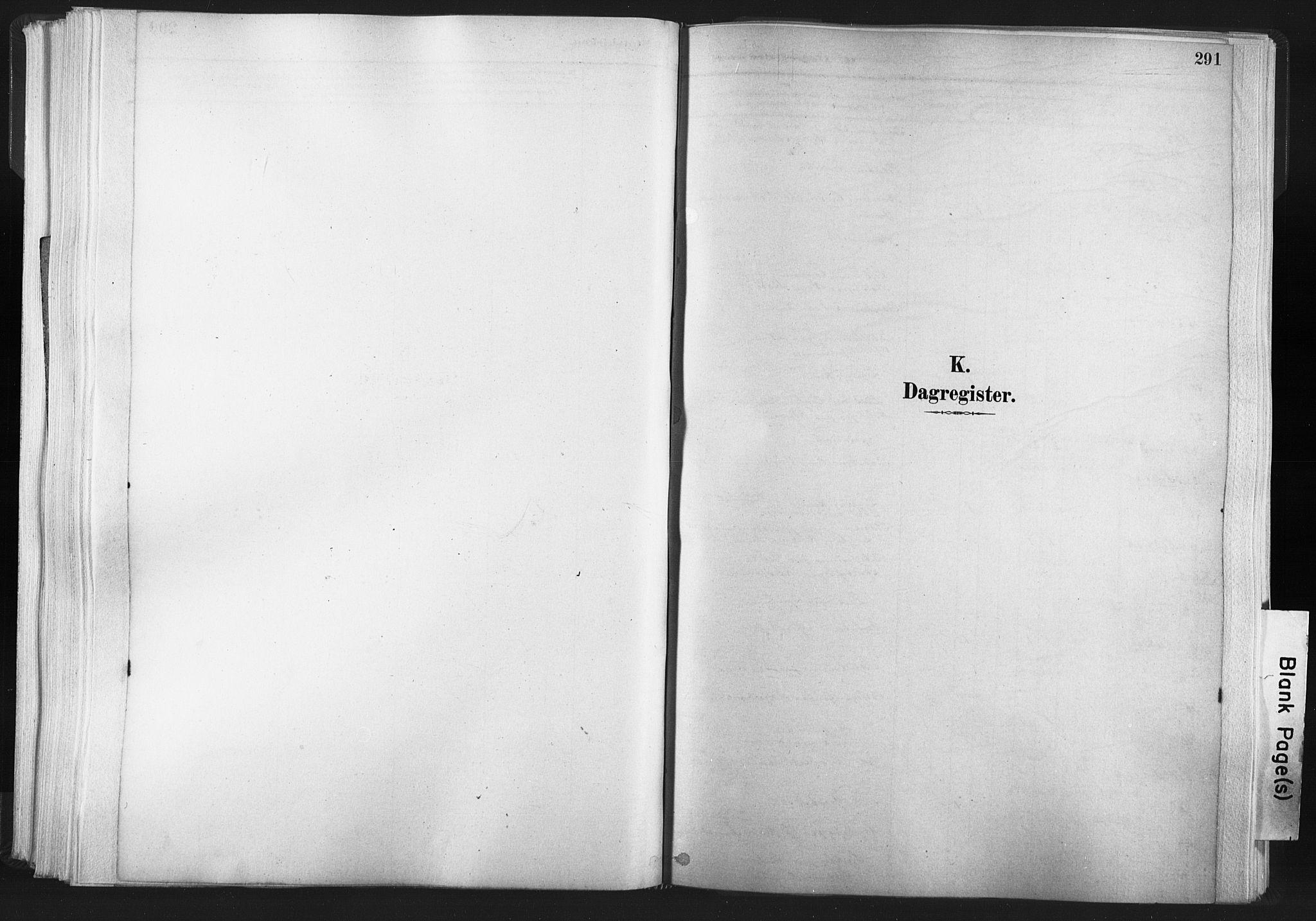 SAT, Ministerialprotokoller, klokkerbøker og fødselsregistre - Nord-Trøndelag, 749/L0474: Ministerialbok nr. 749A08, 1887-1903, s. 291