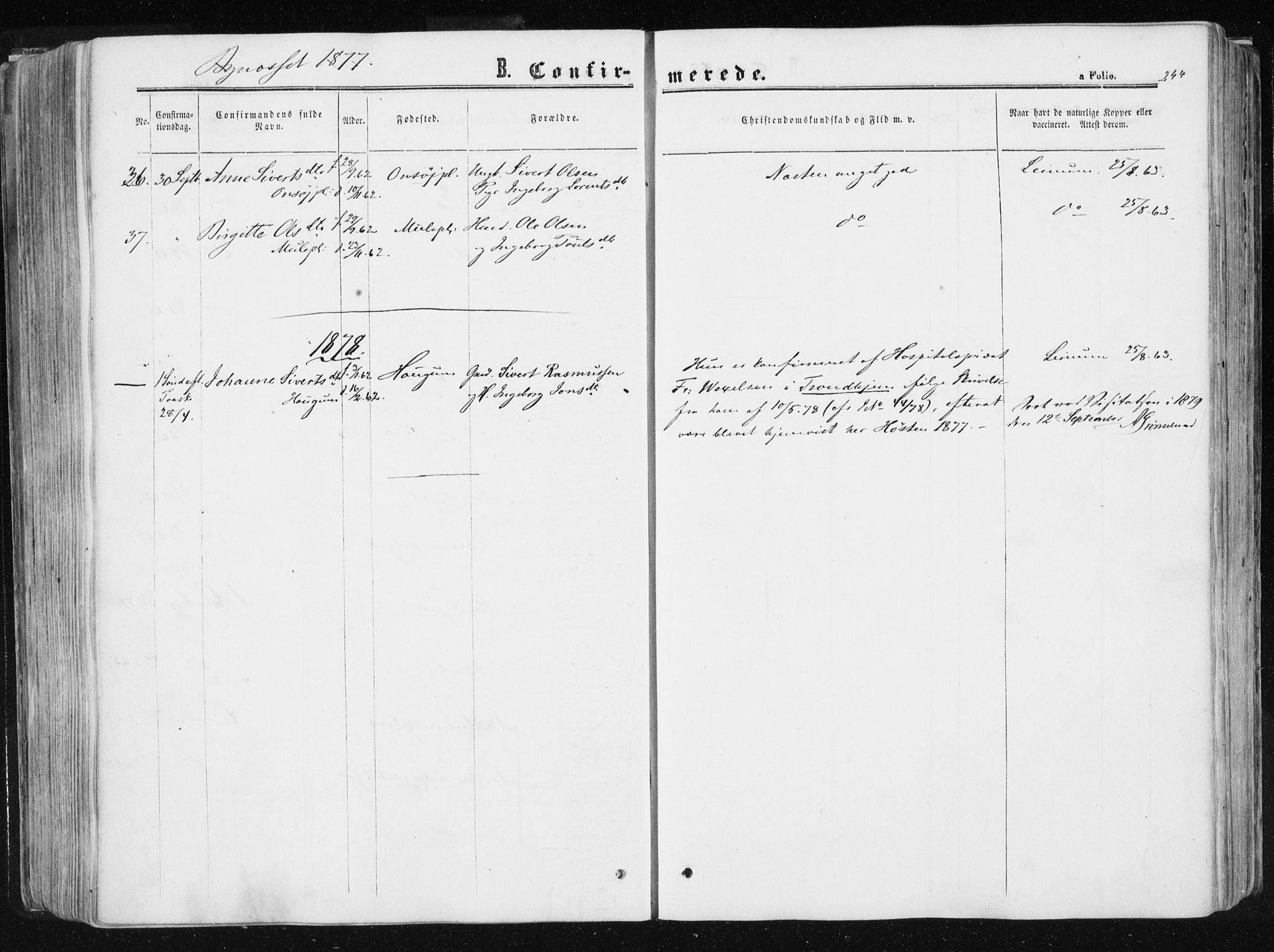 SAT, Ministerialprotokoller, klokkerbøker og fødselsregistre - Sør-Trøndelag, 612/L0377: Ministerialbok nr. 612A09, 1859-1877, s. 244