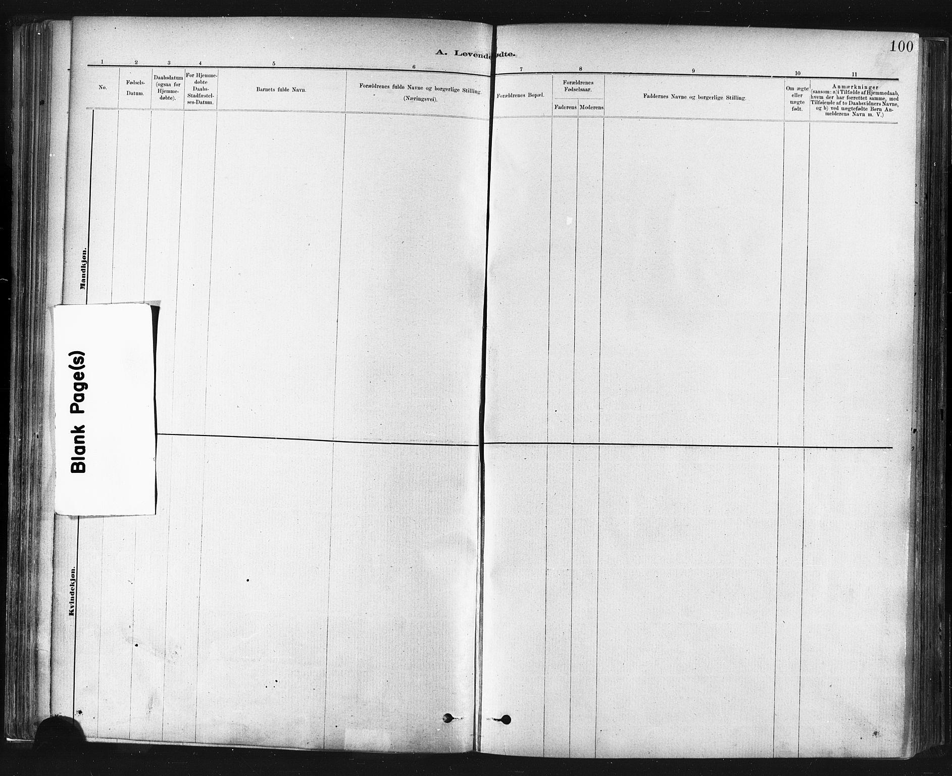 SAT, Ministerialprotokoller, klokkerbøker og fødselsregistre - Sør-Trøndelag, 672/L0857: Ministerialbok nr. 672A09, 1882-1893, s. 100