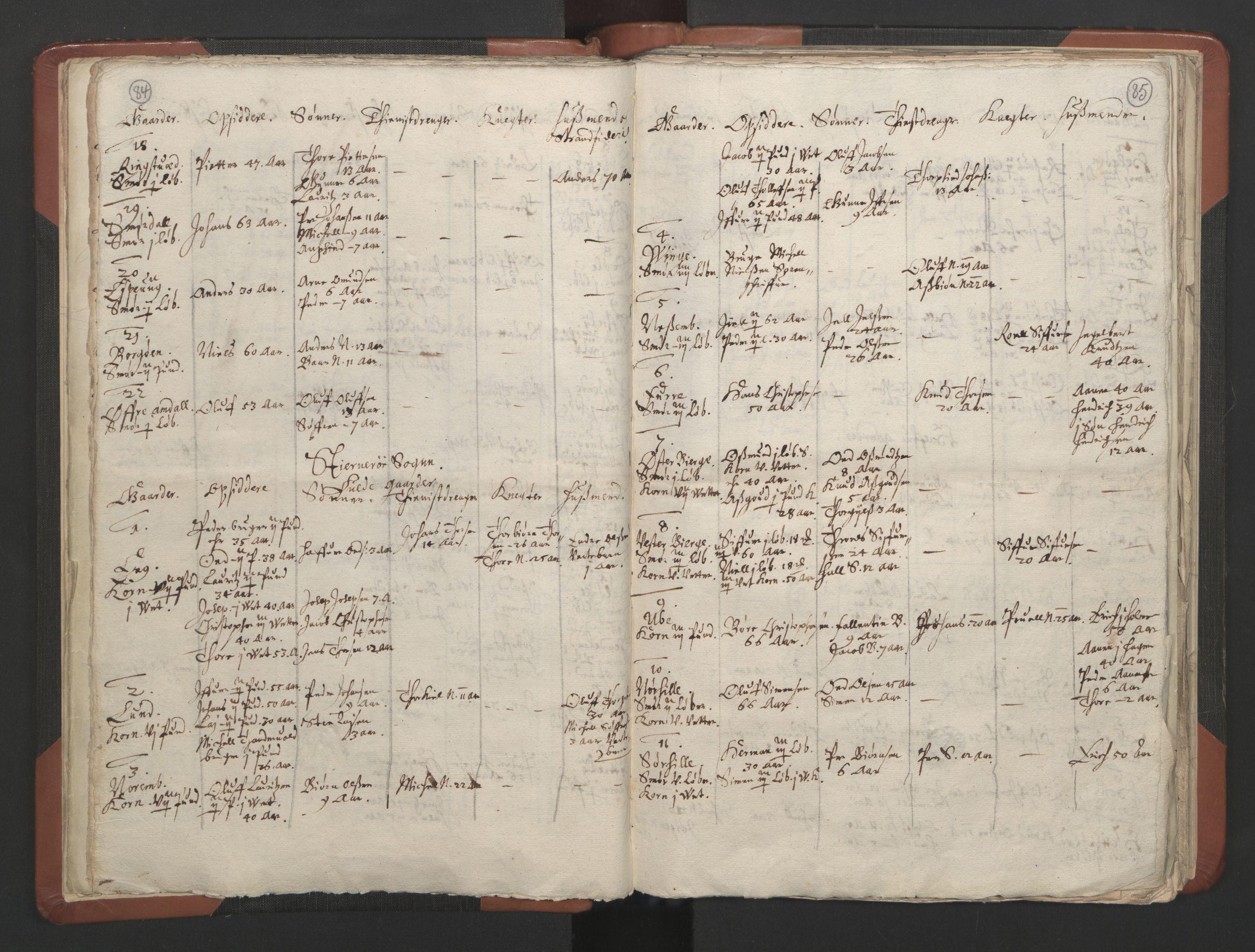 RA, Sogneprestenes manntall 1664-1666, nr. 19: Ryfylke prosti, 1664-1666, s. 84-85