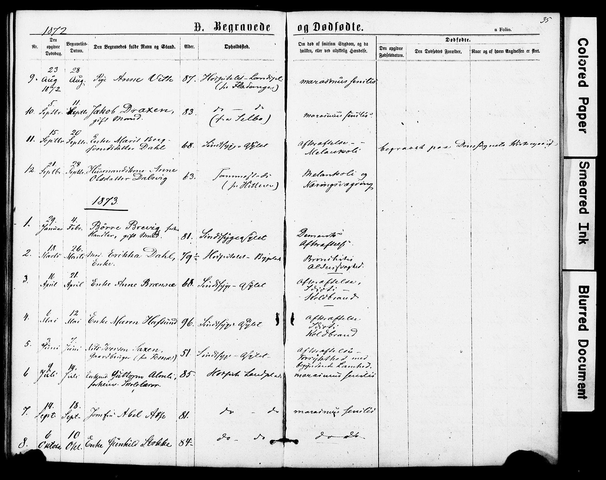 SAT, Ministerialprotokoller, klokkerbøker og fødselsregistre - Sør-Trøndelag, 623/L0469: Ministerialbok nr. 623A03, 1868-1883, s. 35