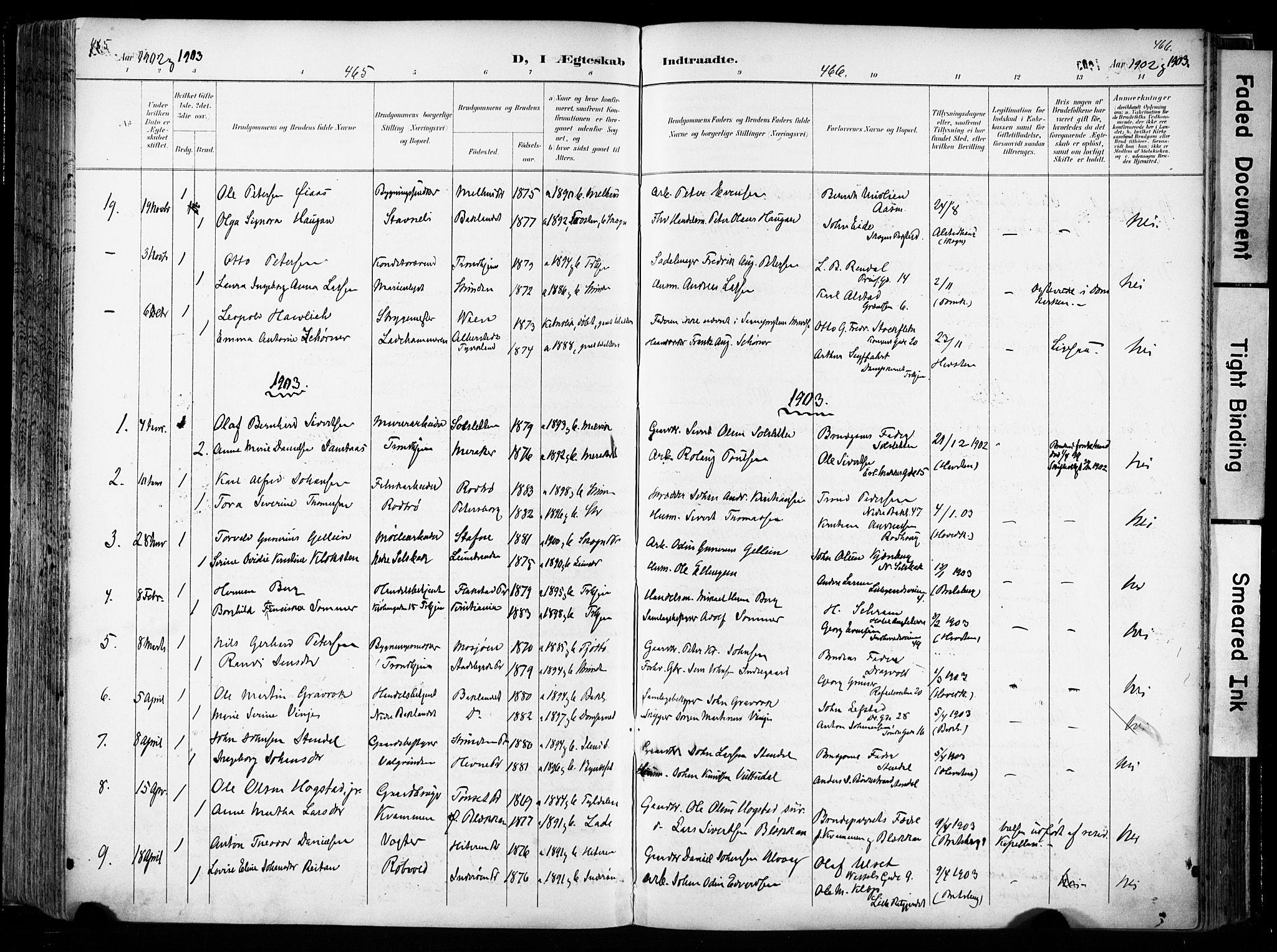 SAT, Ministerialprotokoller, klokkerbøker og fødselsregistre - Sør-Trøndelag, 606/L0301: Ministerialbok nr. 606A16, 1894-1907, s. 465-466