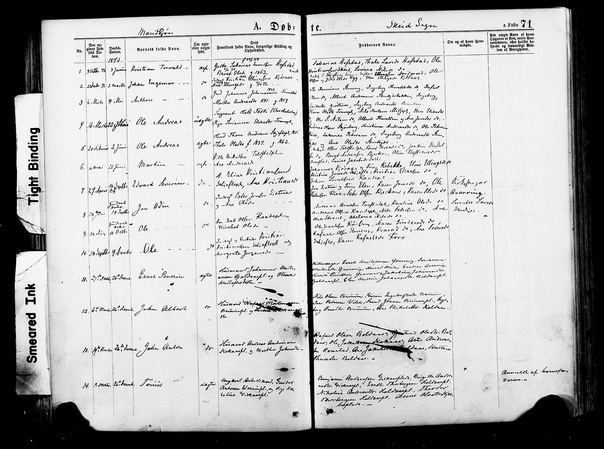 SAT, Ministerialprotokoller, klokkerbøker og fødselsregistre - Nord-Trøndelag, 735/L0348: Ministerialbok nr. 735A09 /2, 1873-1883, s. 71