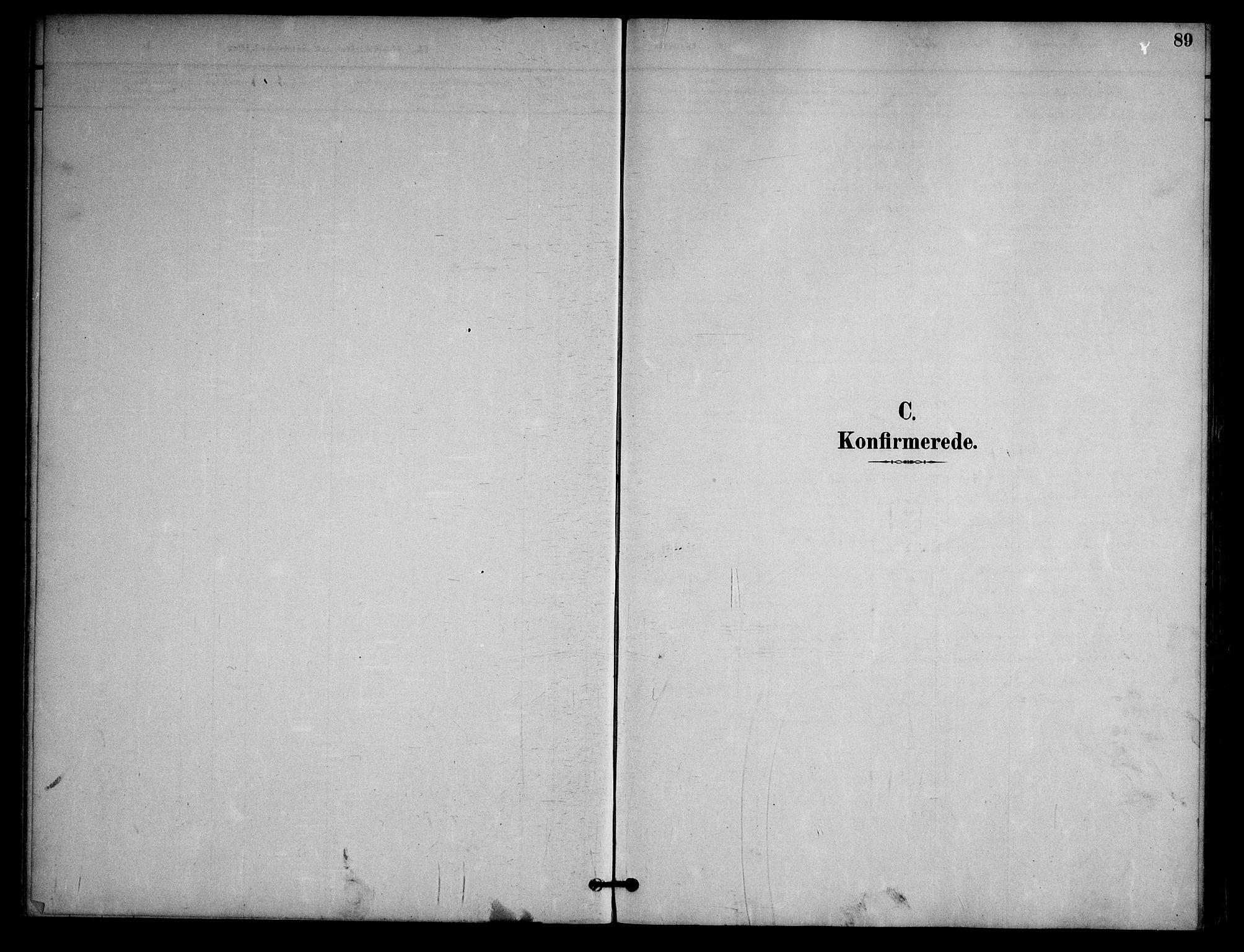 SAKO, Nissedal kirkebøker, G/Ga/L0003: Klokkerbok nr. I 3, 1887-1911, s. 89