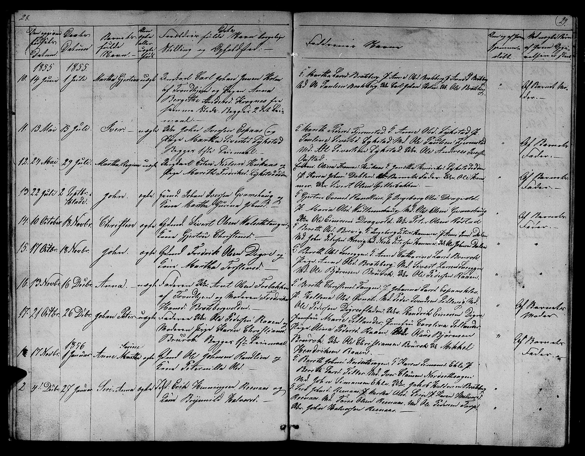 SAT, Ministerialprotokoller, klokkerbøker og fødselsregistre - Sør-Trøndelag, 608/L0339: Klokkerbok nr. 608C05, 1844-1863, s. 28-29