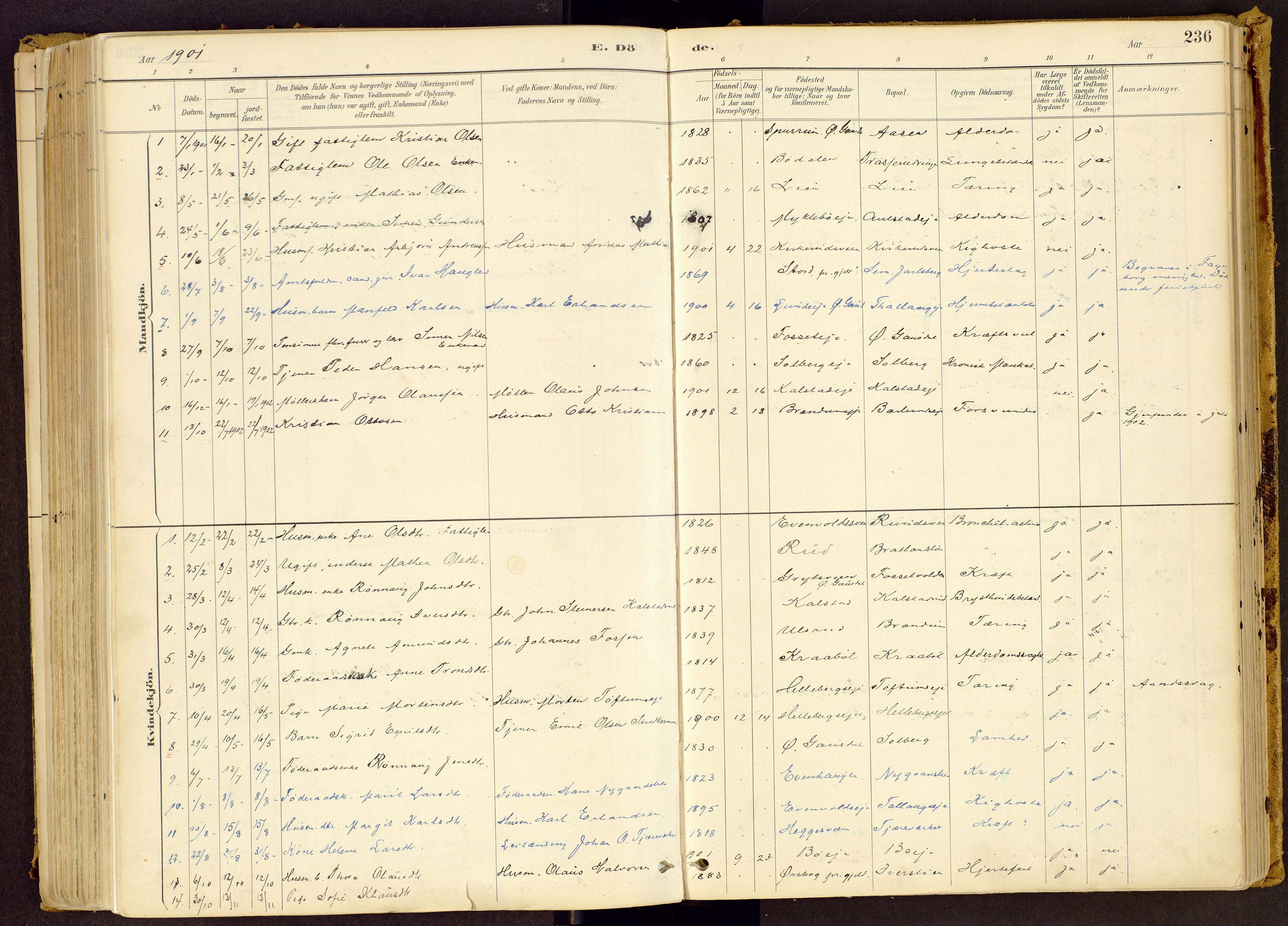 SAH, Vestre Gausdal prestekontor, Ministerialbok nr. 1, 1887-1914, s. 236