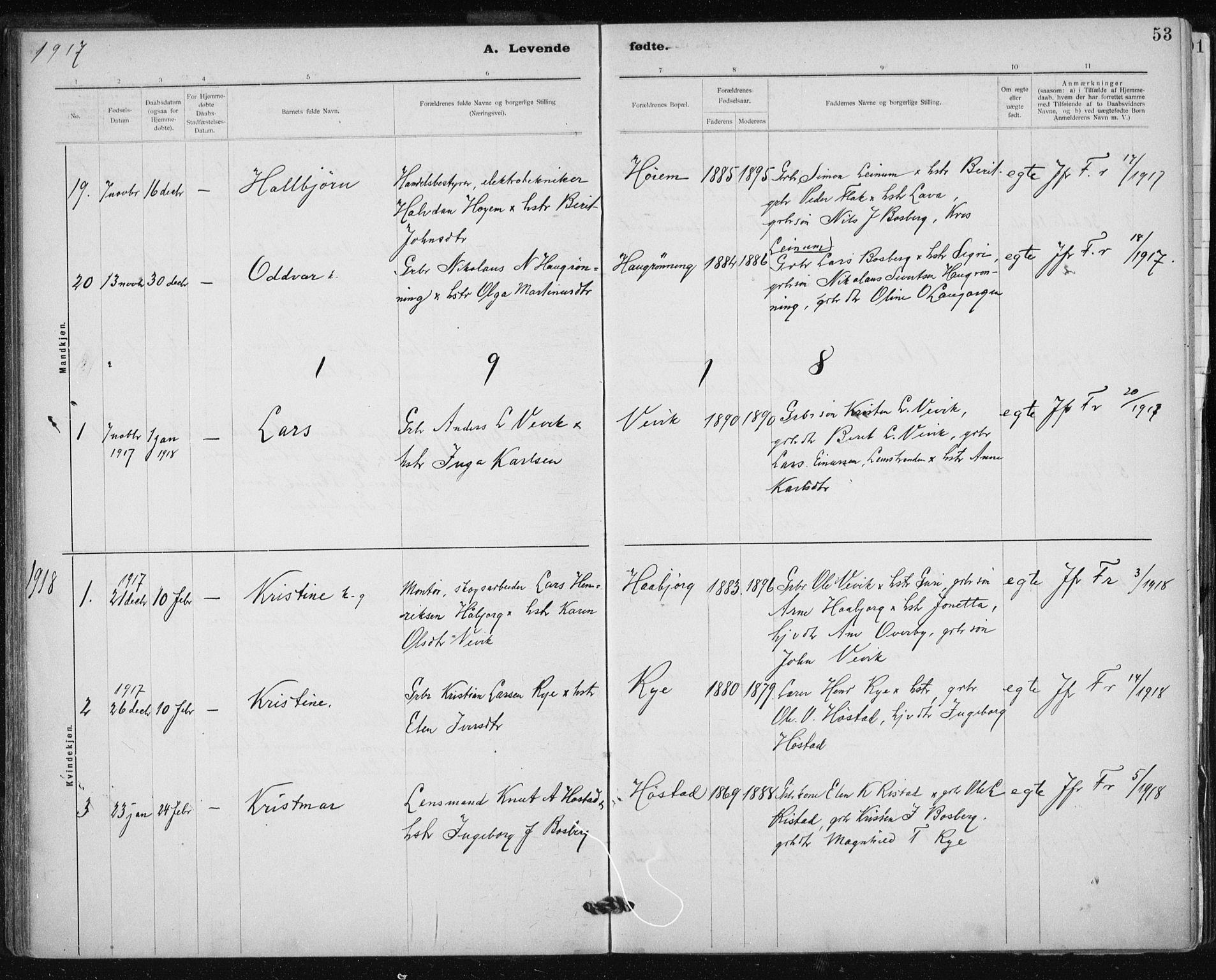 SAT, Ministerialprotokoller, klokkerbøker og fødselsregistre - Sør-Trøndelag, 612/L0381: Ministerialbok nr. 612A13, 1907-1923, s. 53