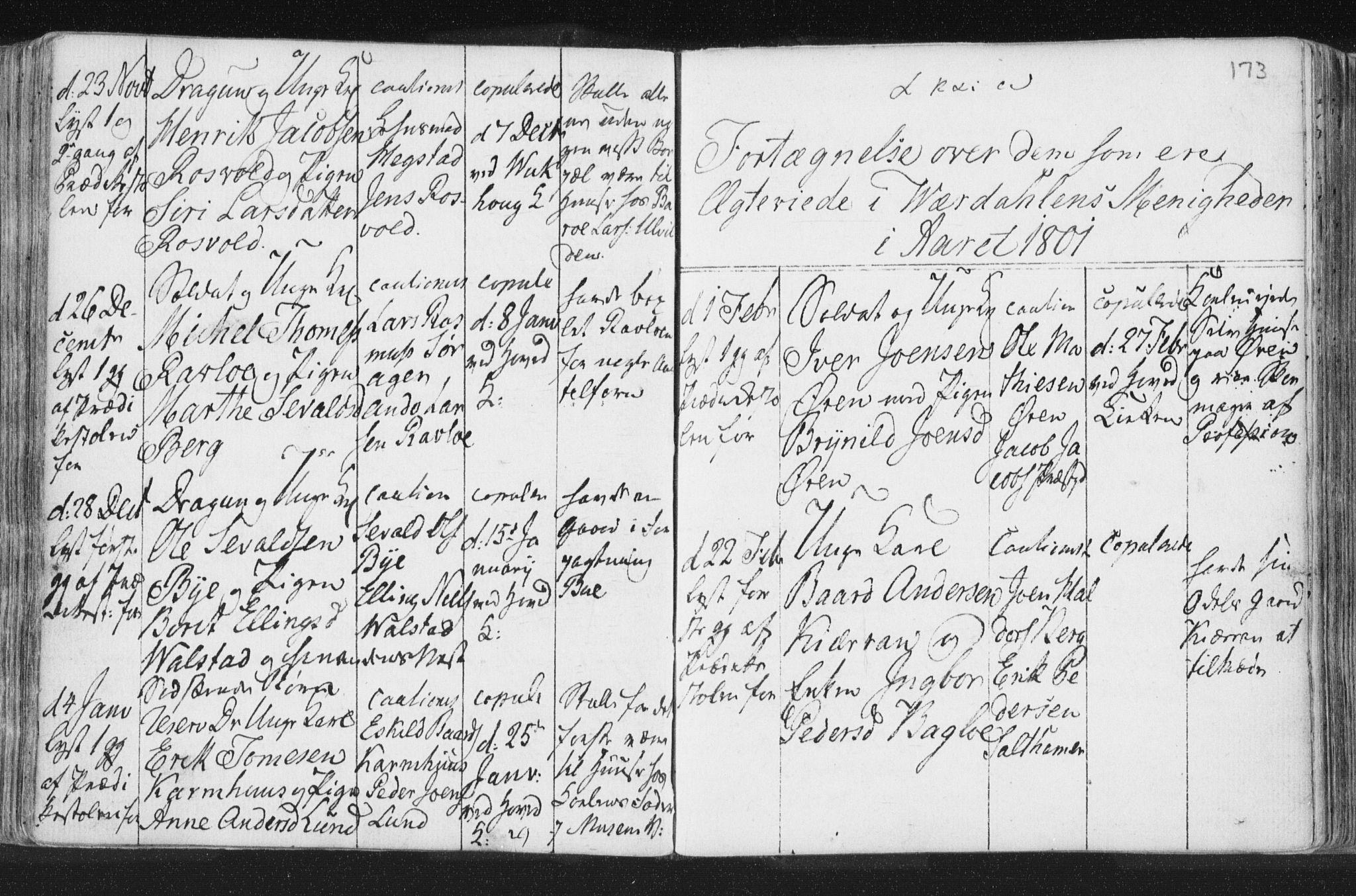 SAT, Ministerialprotokoller, klokkerbøker og fødselsregistre - Nord-Trøndelag, 723/L0232: Ministerialbok nr. 723A03, 1781-1804, s. 173