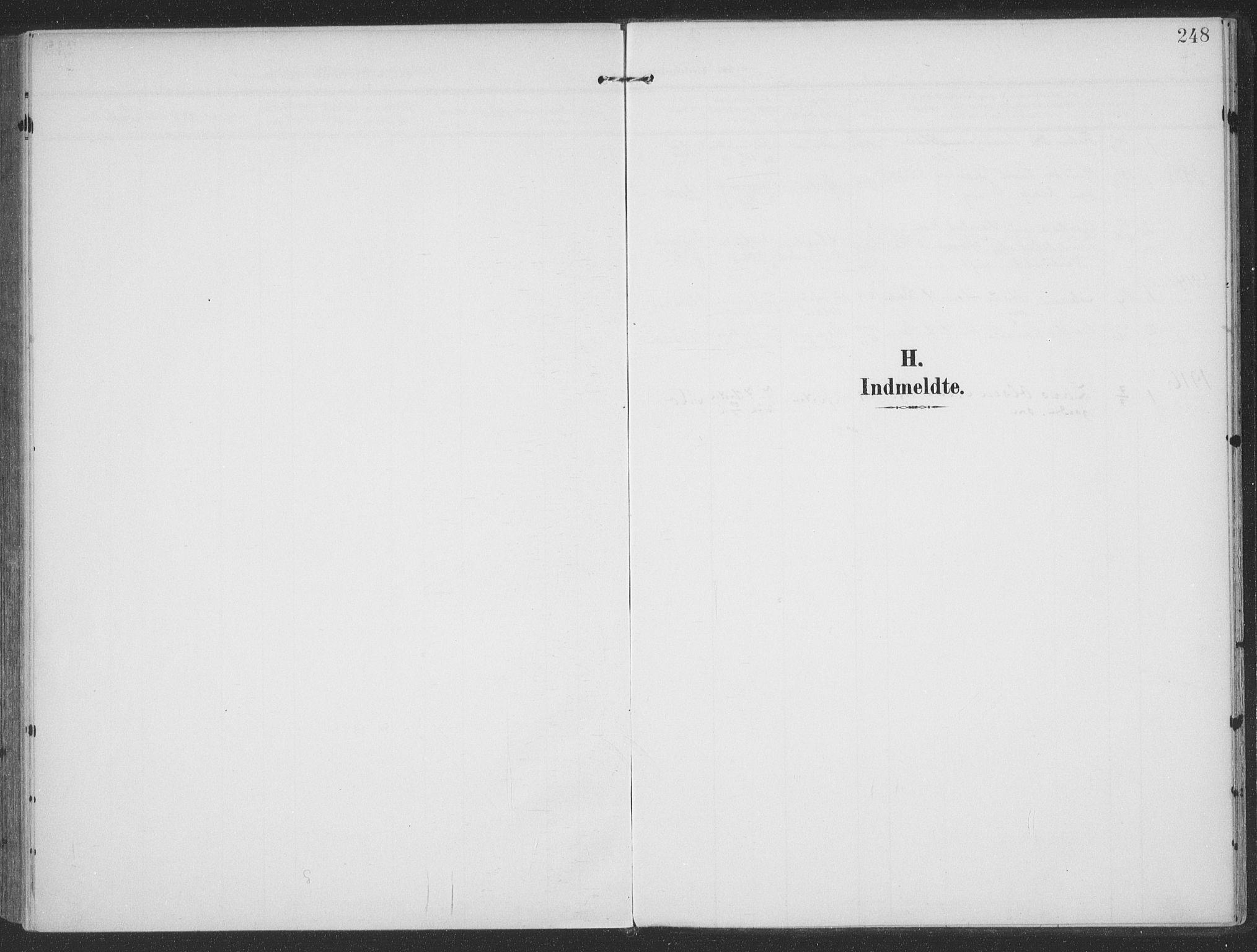 SAT, Ministerialprotokoller, klokkerbøker og fødselsregistre - Møre og Romsdal, 513/L0178: Ministerialbok nr. 513A05, 1906-1919, s. 248