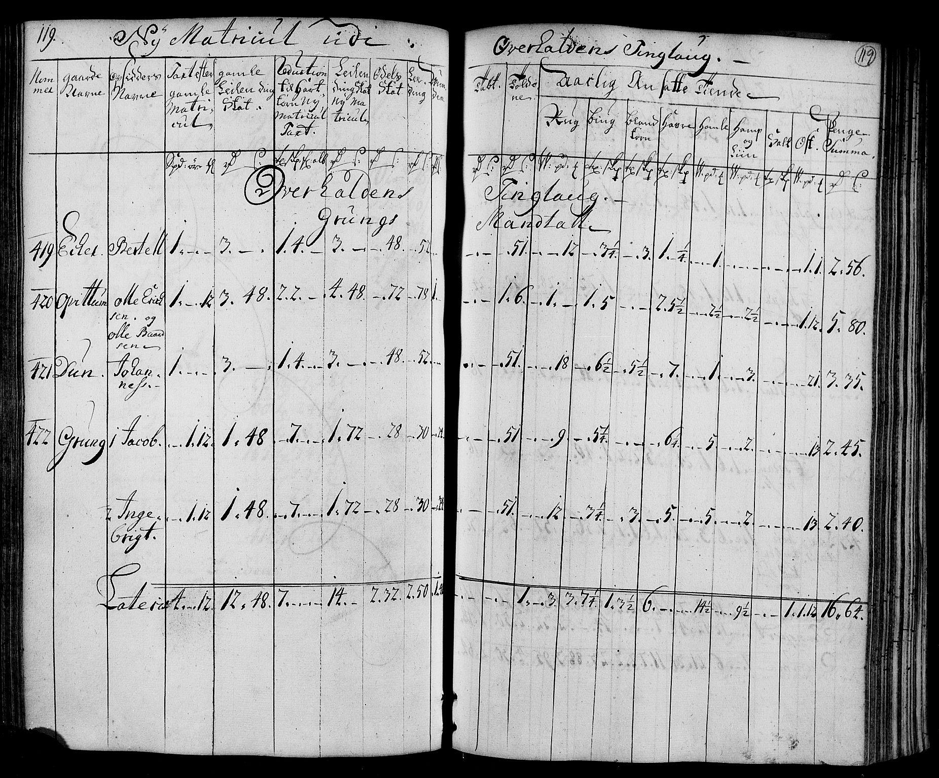 RA, Rentekammeret inntil 1814, Realistisk ordnet avdeling, N/Nb/Nbf/L0169: Namdalen matrikkelprotokoll, 1723, s. 118b-119a