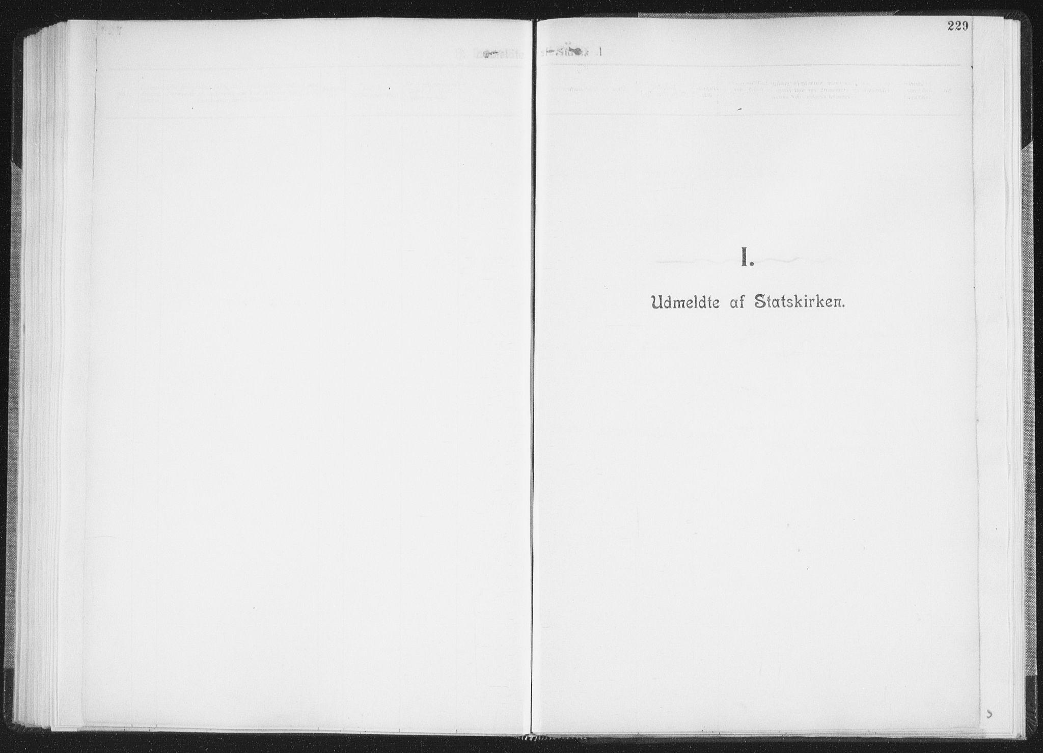 SAT, Ministerialprotokoller, klokkerbøker og fødselsregistre - Nordland, 850/L0711: Residerende kapellans bok nr. 850B01, 1902-1915, s. 229