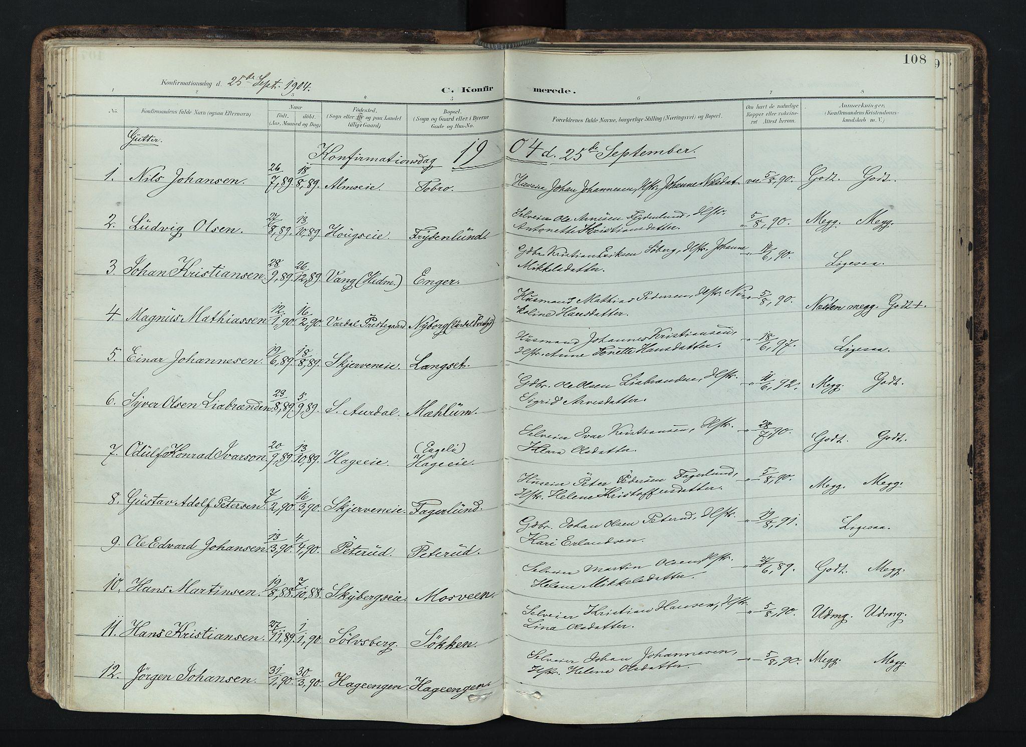 SAH, Vardal prestekontor, H/Ha/Haa/L0019: Ministerialbok nr. 19, 1893-1907, s. 108
