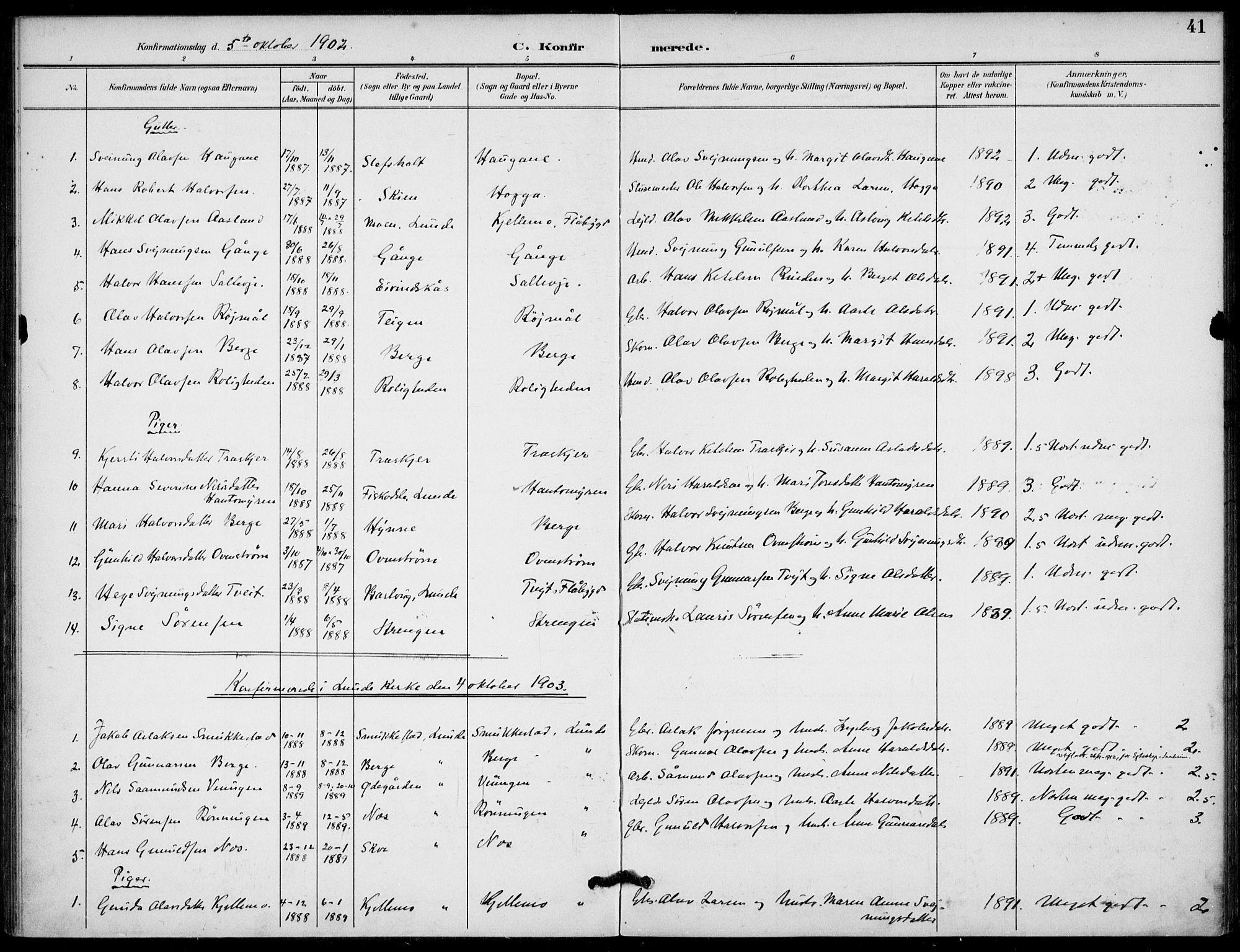 SAKO, Lunde kirkebøker, F/Fb/L0004: Ministerialbok nr. II 4, 1892-1907, s. 41
