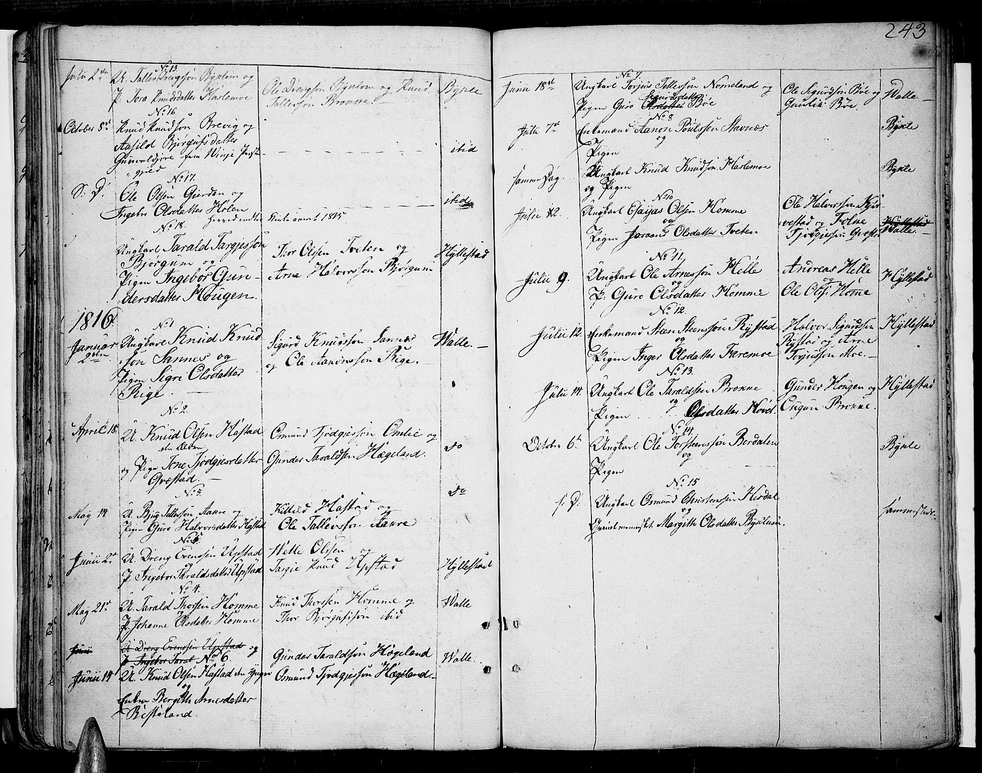 SAK, Valle sokneprestkontor, F/Fa/Fac/L0004: Ministerialbok nr. A 4, 1790-1816, s. 243