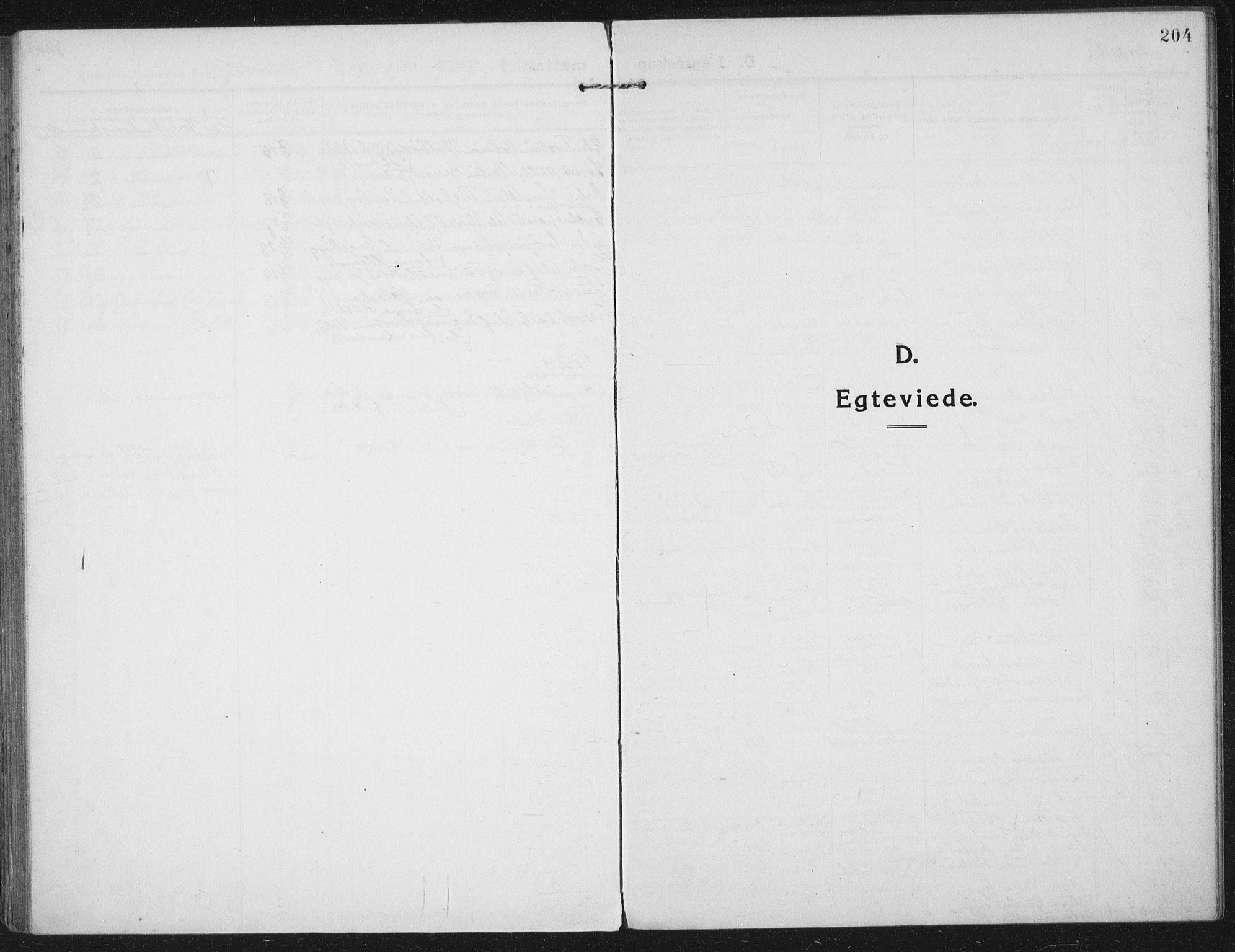 SAT, Ministerialprotokoller, klokkerbøker og fødselsregistre - Nord-Trøndelag, 709/L0083: Ministerialbok nr. 709A23, 1916-1928, s. 204