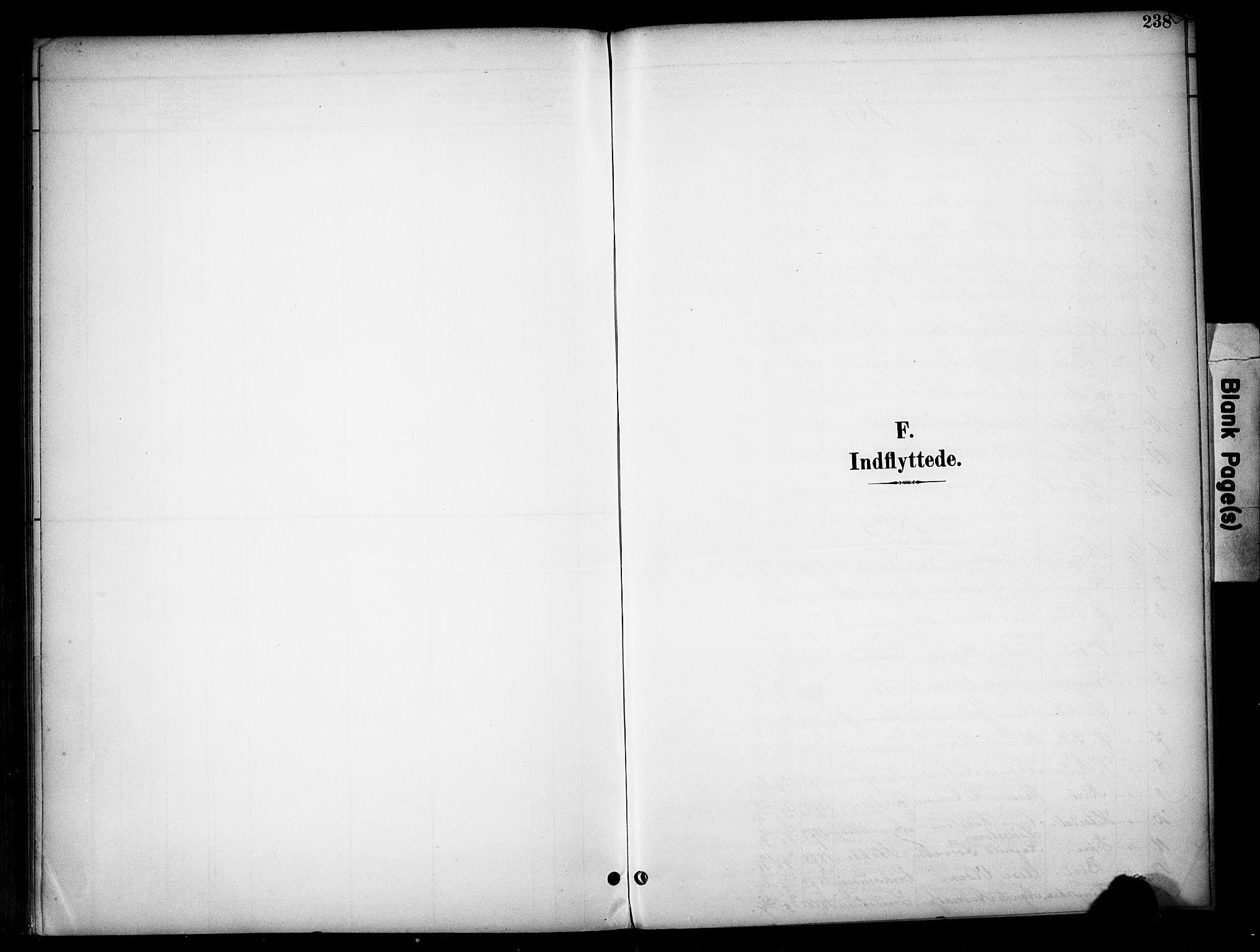 SAH, Vardal prestekontor, H/Ha/Haa/L0012: Ministerialbok nr. 12, 1893-1904, s. 238