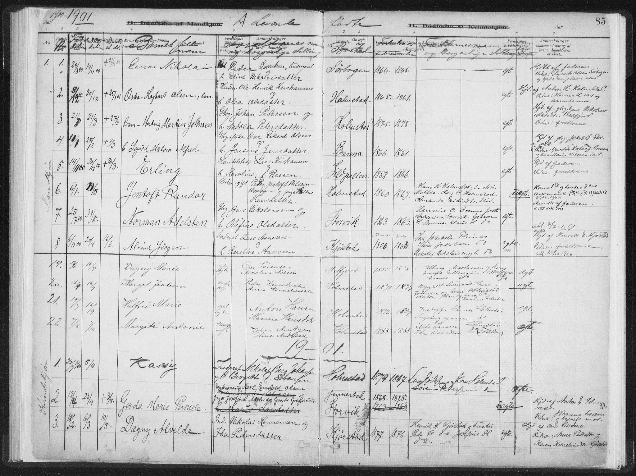SAT, Ministerialprotokoller, klokkerbøker og fødselsregistre - Nordland, 890/L1286: Ministerialbok nr. 890A01, 1882-1902, s. 85