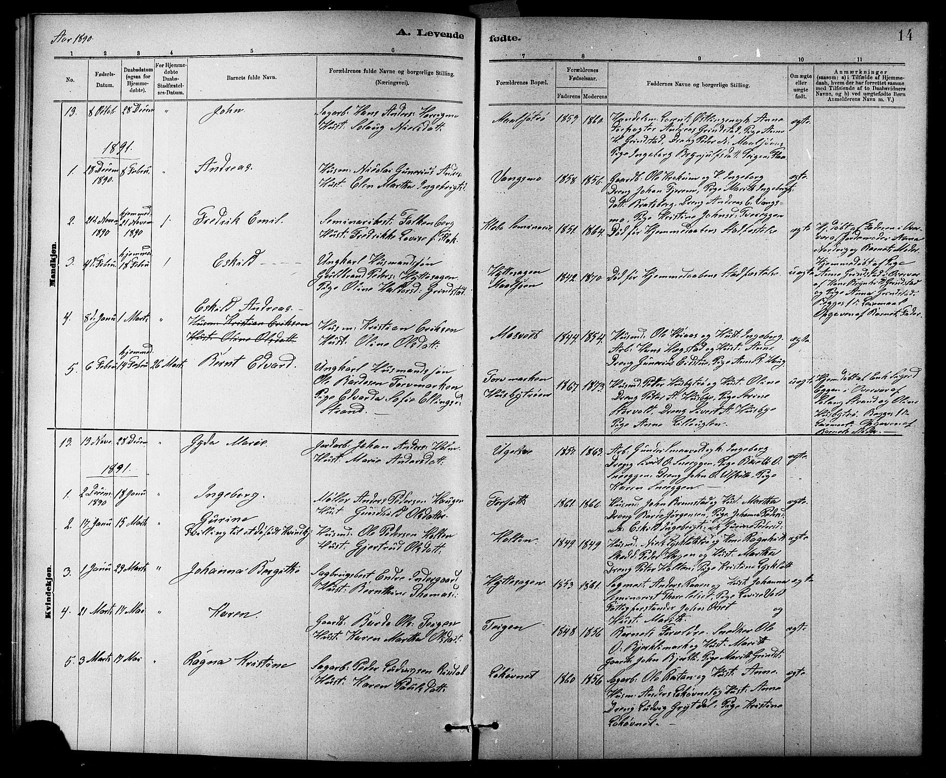 SAT, Ministerialprotokoller, klokkerbøker og fødselsregistre - Sør-Trøndelag, 618/L0452: Klokkerbok nr. 618C03, 1884-1906, s. 14