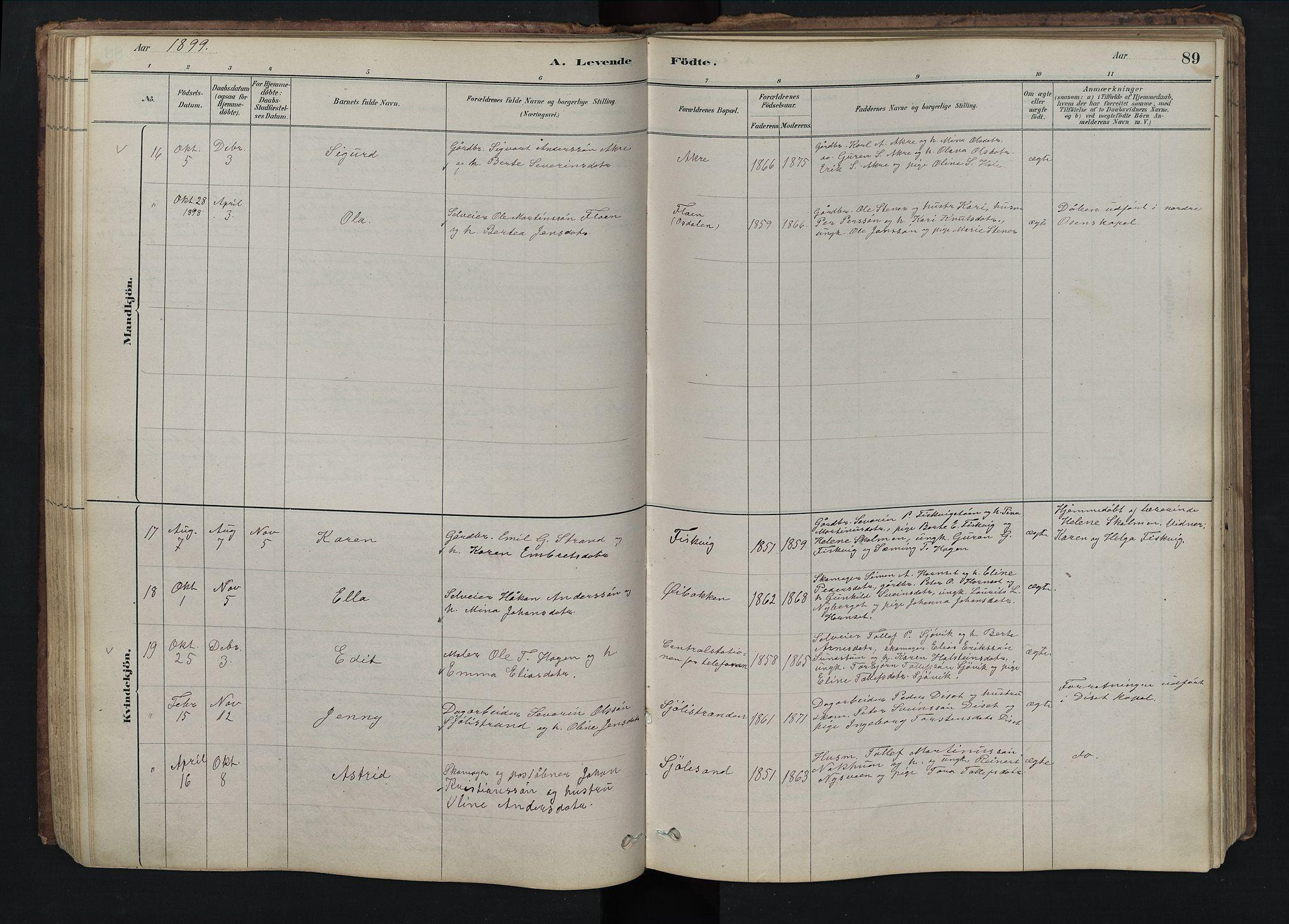 SAH, Rendalen prestekontor, H/Ha/Hab/L0009: Klokkerbok nr. 9, 1879-1902, s. 89
