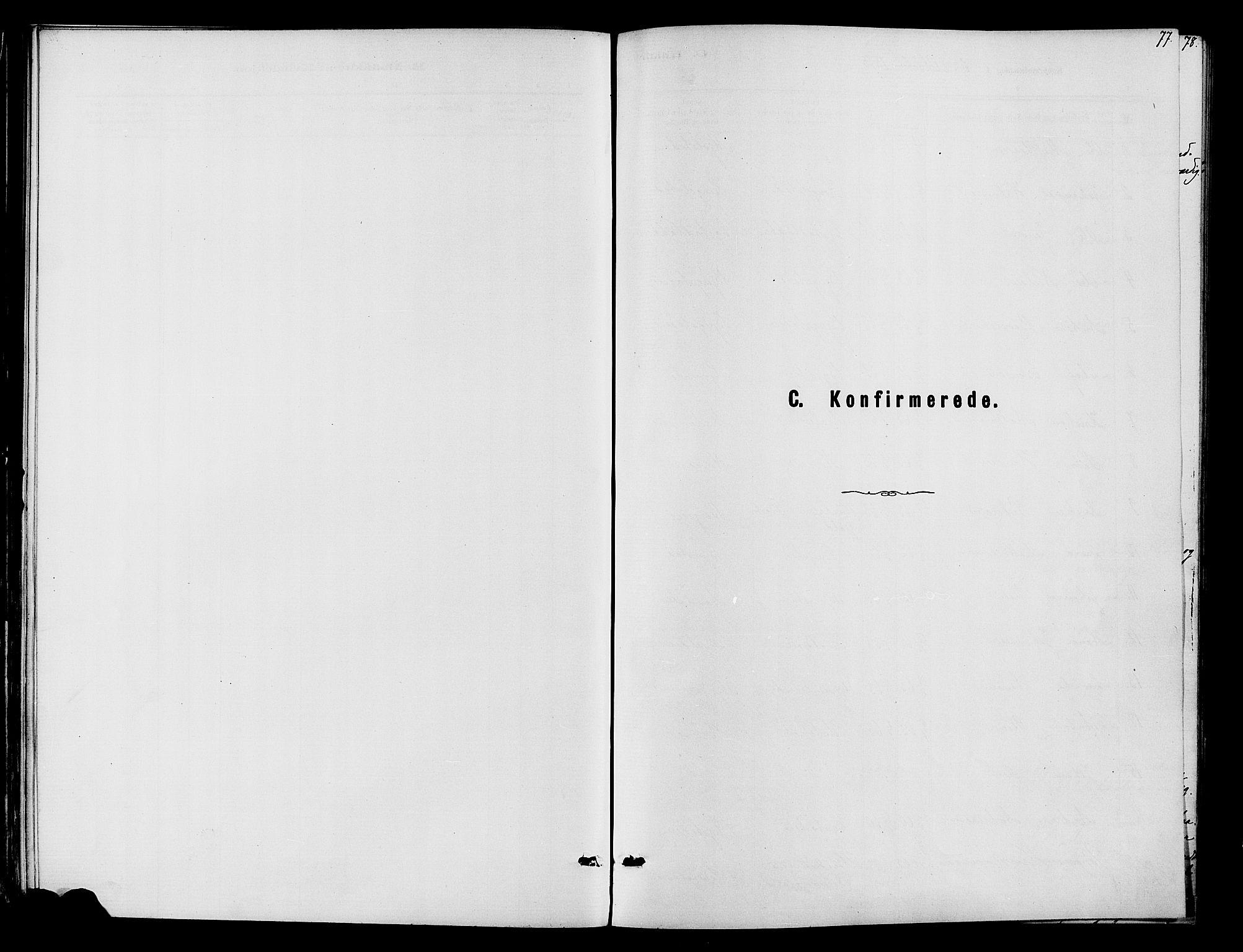 SAH, Vardal prestekontor, H/Ha/Haa/L0010: Ministerialbok nr. 10, 1878-1893, s. 77