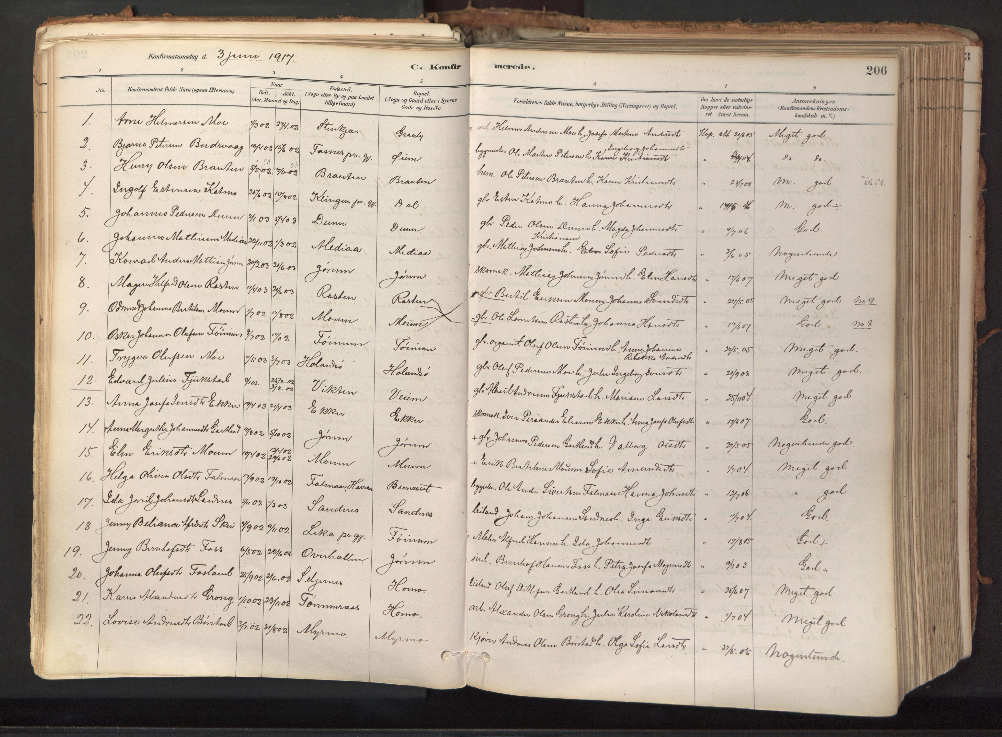 SAT, Ministerialprotokoller, klokkerbøker og fødselsregistre - Nord-Trøndelag, 758/L0519: Ministerialbok nr. 758A04, 1880-1926, s. 206