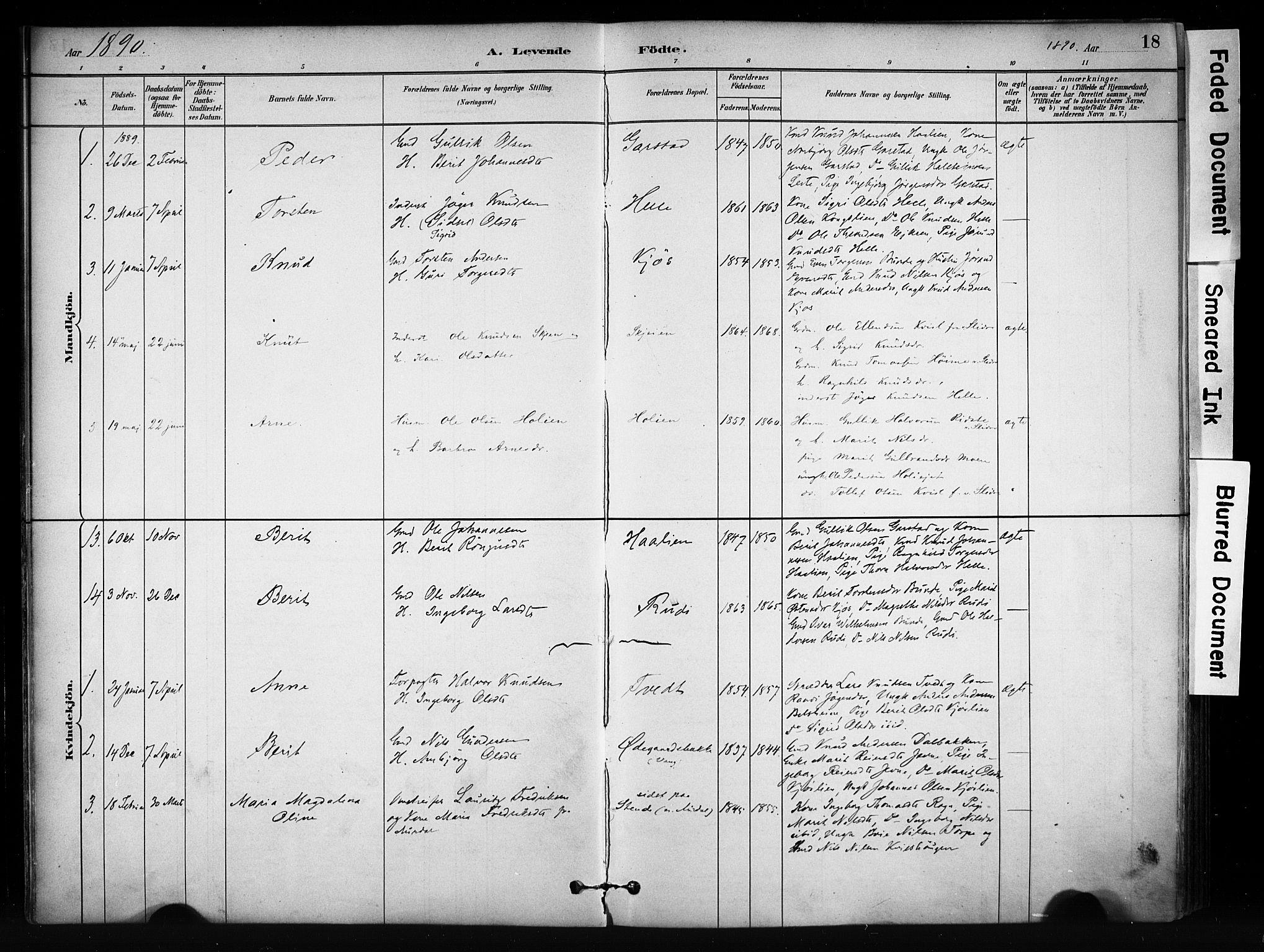 SAH, Vang prestekontor, Valdres, Ministerialbok nr. 9, 1882-1914, s. 18