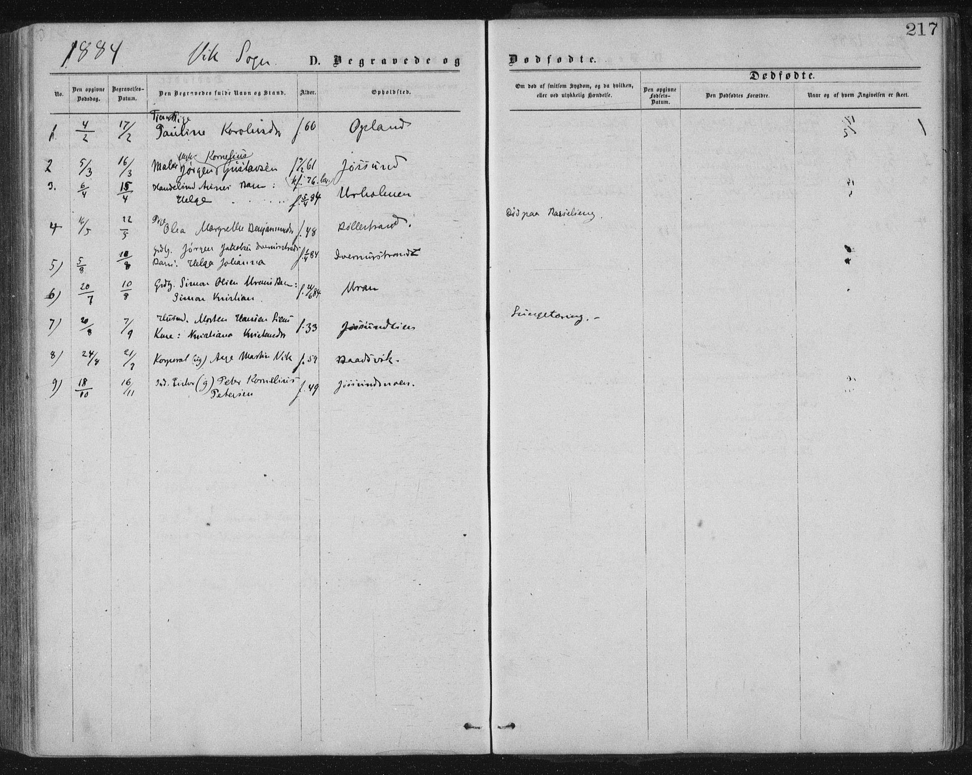 SAT, Ministerialprotokoller, klokkerbøker og fødselsregistre - Nord-Trøndelag, 771/L0596: Ministerialbok nr. 771A03, 1870-1884, s. 217