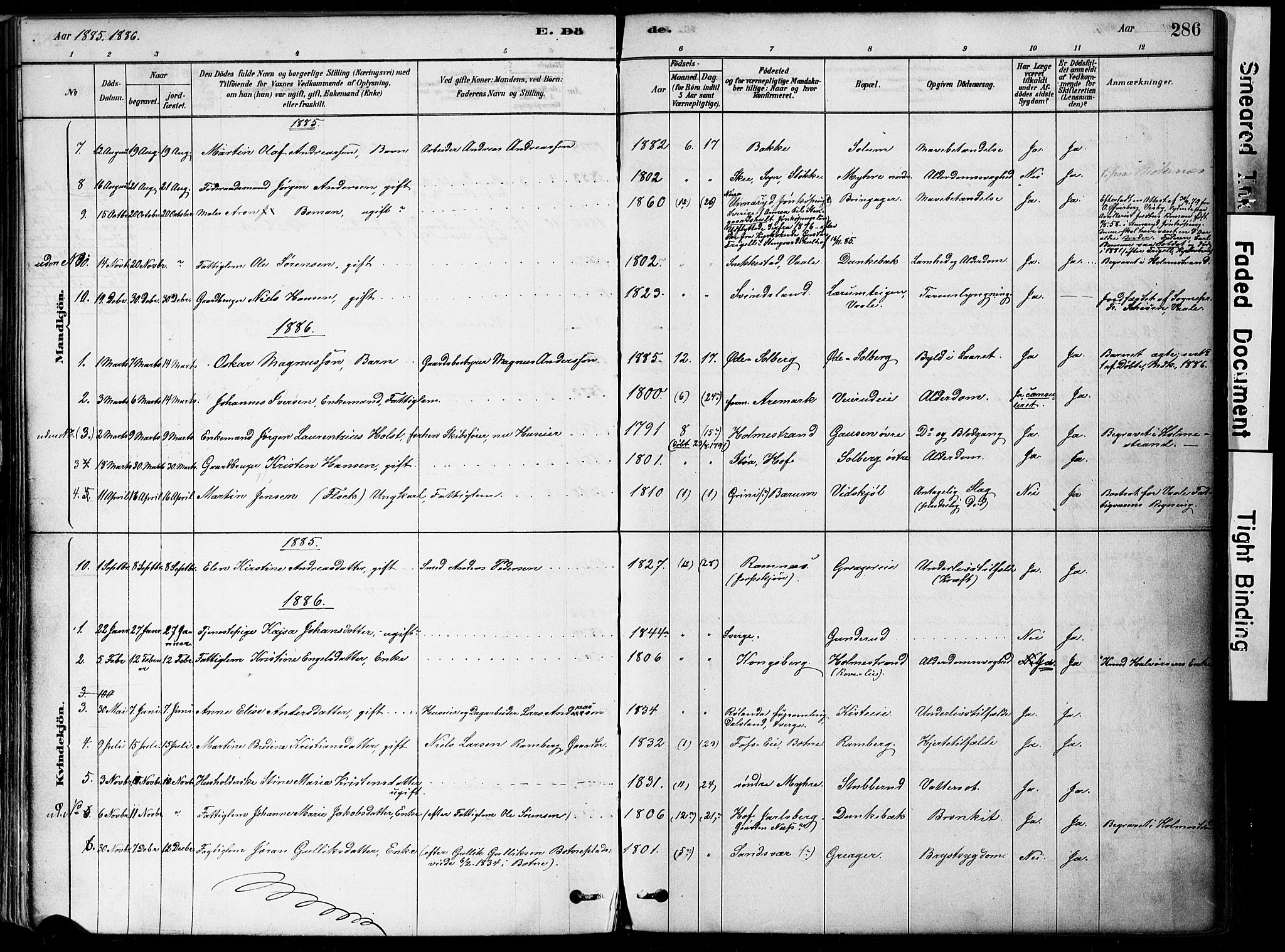 SAKO, Botne kirkebøker, F/Fa/L0007: Ministerialbok nr. I 7, 1878-1910, s. 286