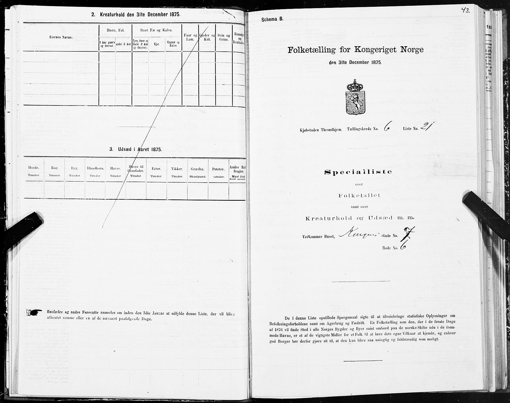 SAT, Folketelling 1875 for 1601 Trondheim kjøpstad, 1875, s. 4043