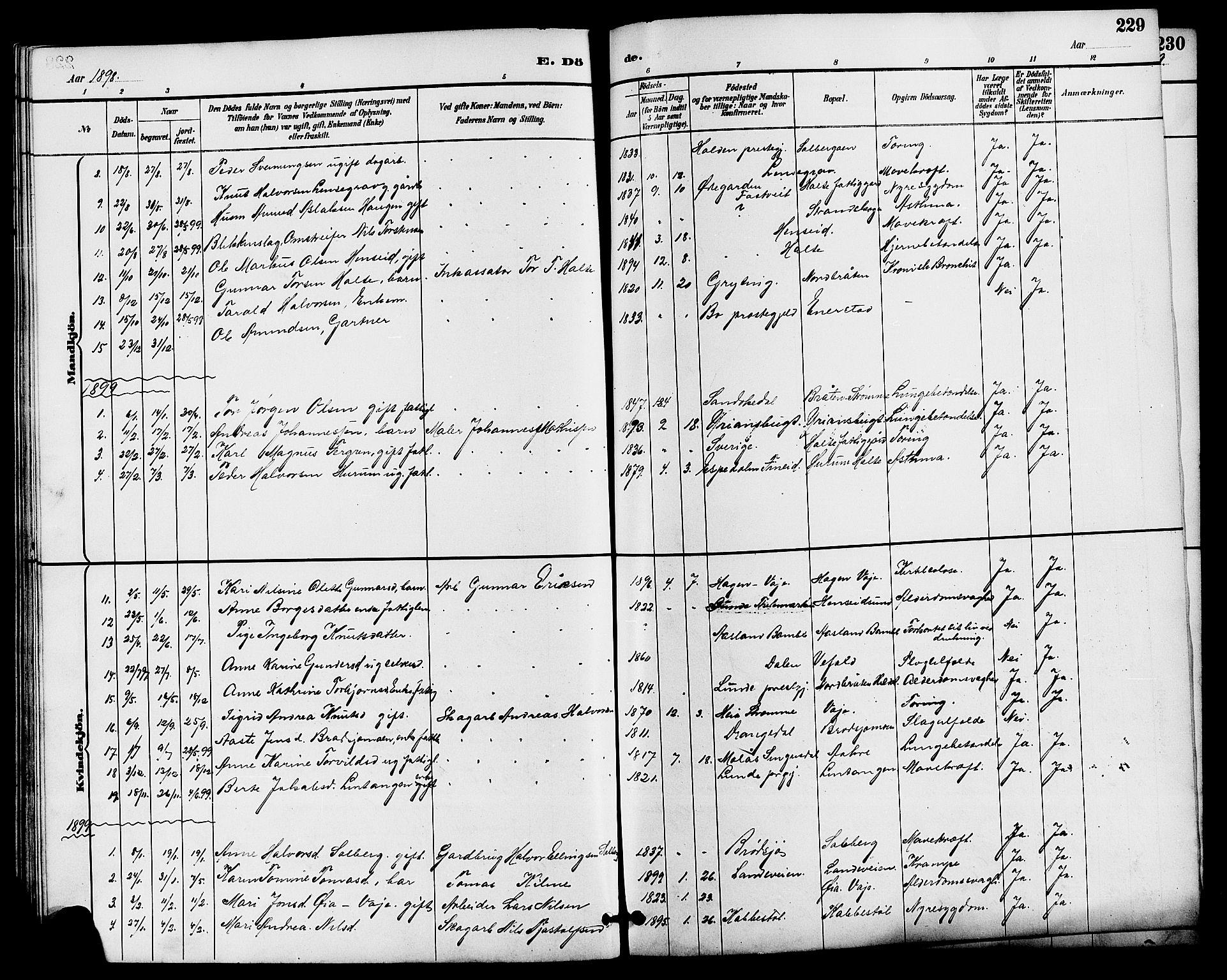SAKO, Drangedal kirkebøker, G/Ga/L0003: Klokkerbok nr. I 3, 1887-1906, s. 229