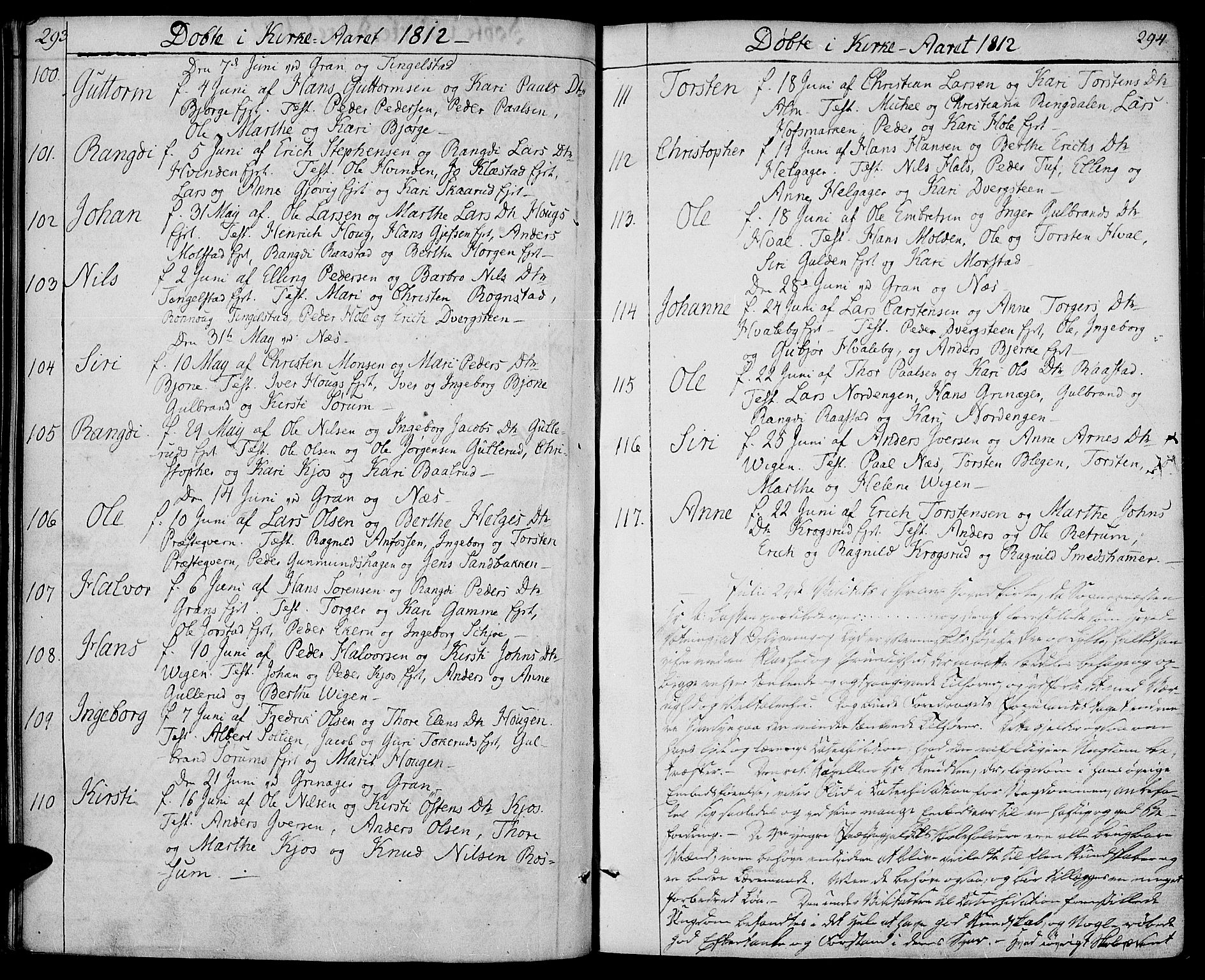 SAH, Gran prestekontor, Ministerialbok nr. 8, 1798-1811, s. 293-294
