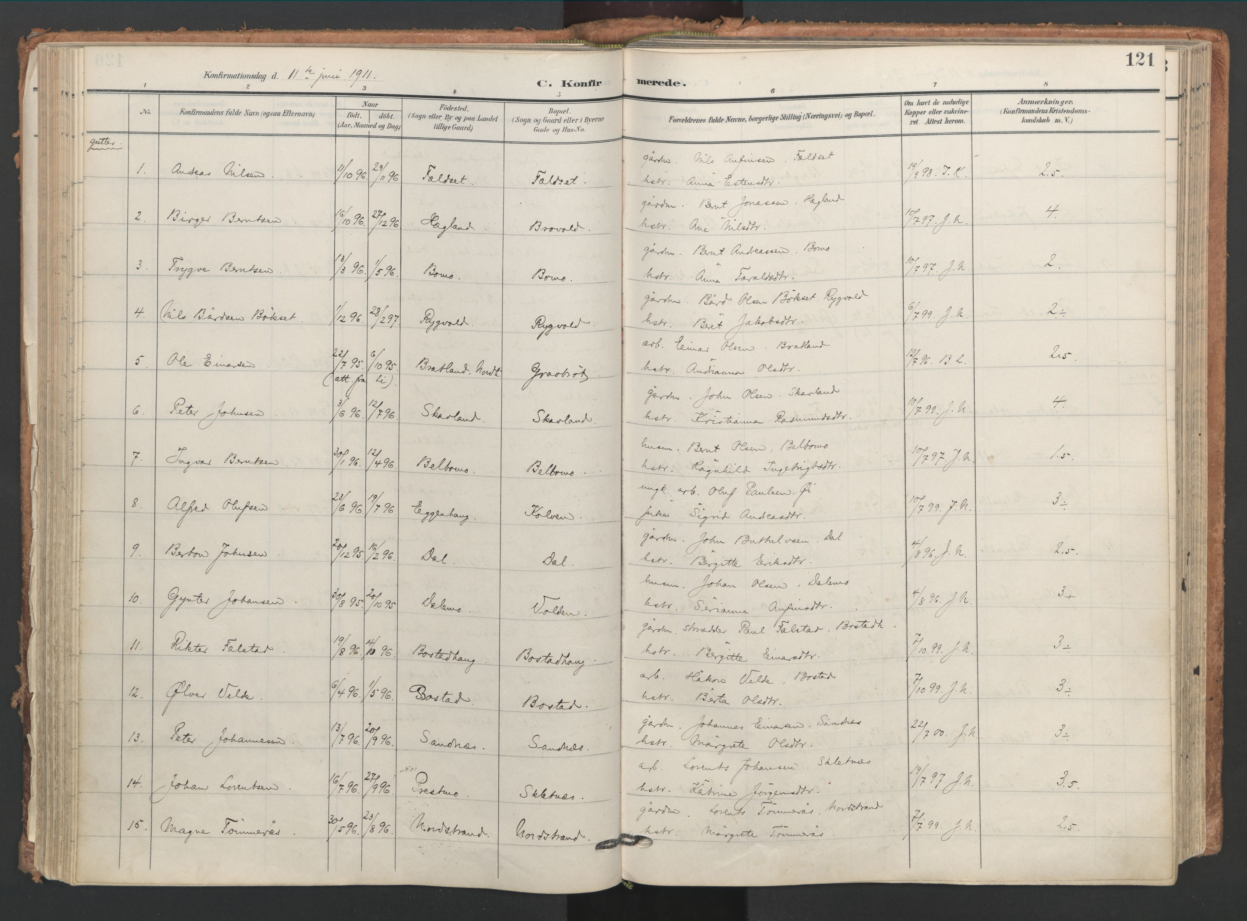 SAT, Ministerialprotokoller, klokkerbøker og fødselsregistre - Nord-Trøndelag, 749/L0477: Ministerialbok nr. 749A11, 1902-1927, s. 121