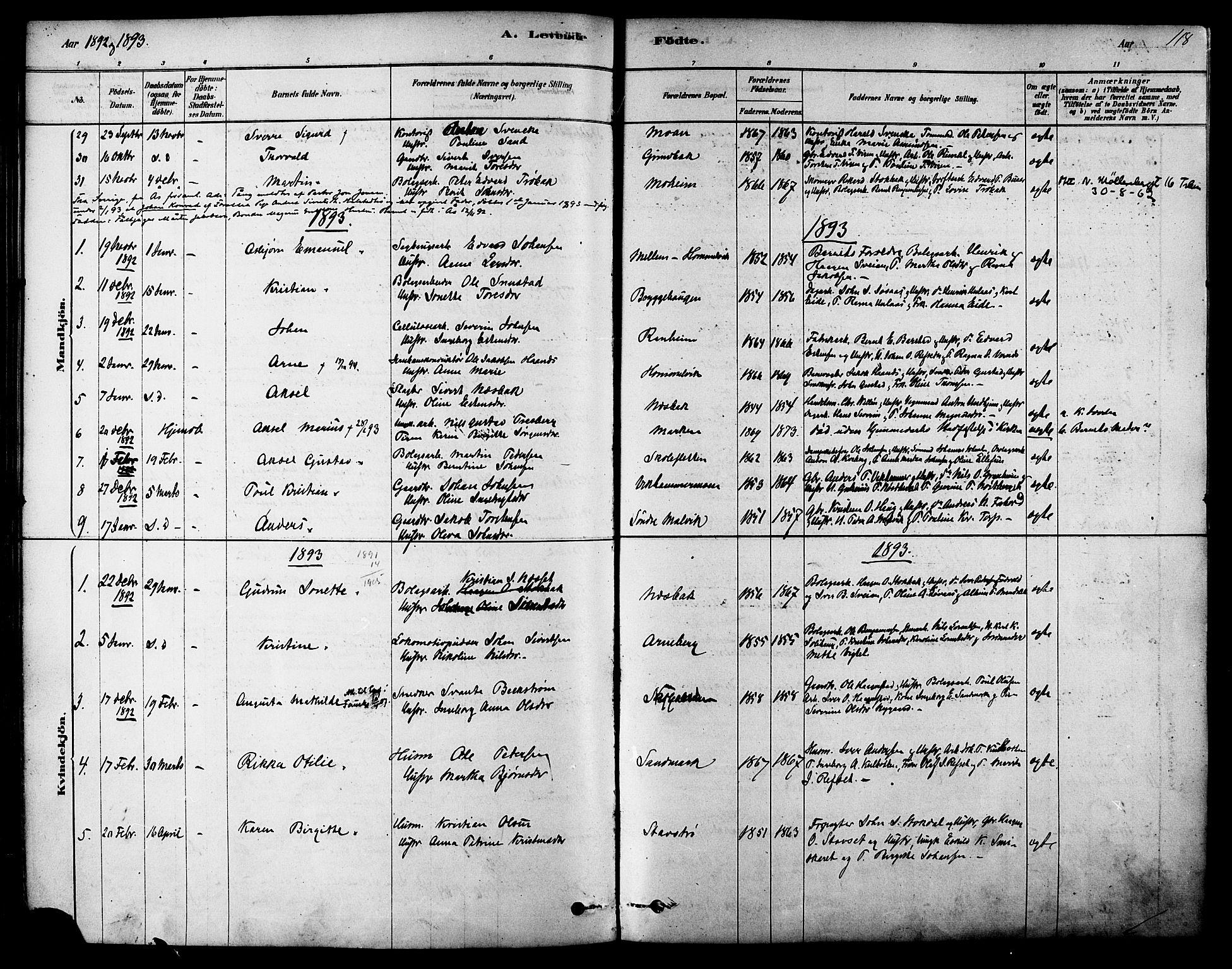 SAT, Ministerialprotokoller, klokkerbøker og fødselsregistre - Sør-Trøndelag, 616/L0410: Ministerialbok nr. 616A07, 1878-1893, s. 118