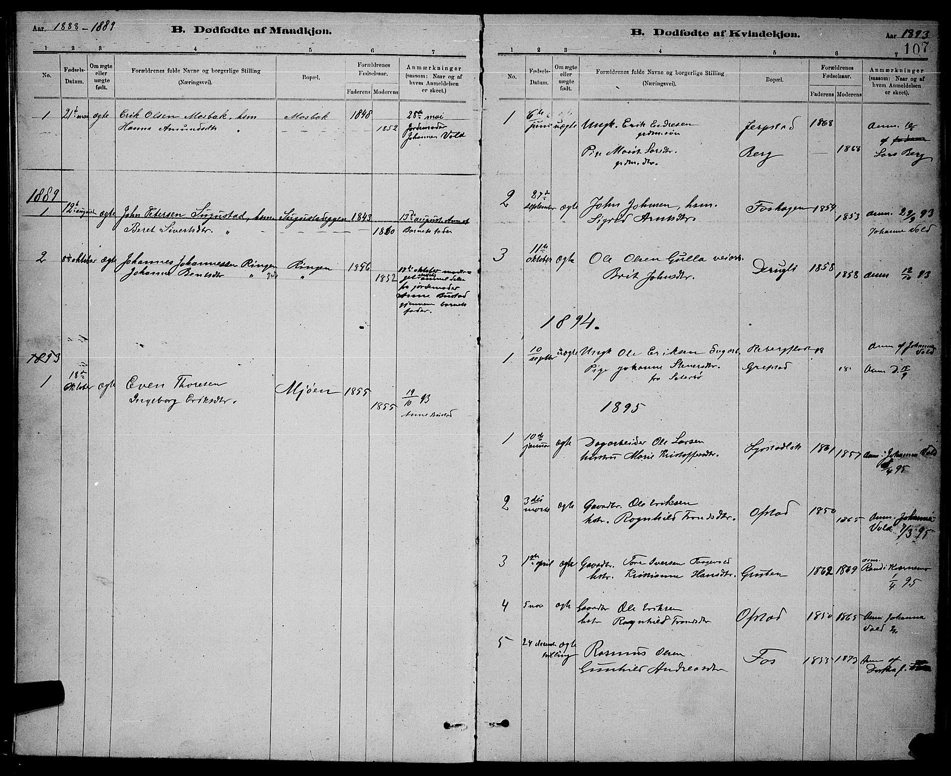 SAT, Ministerialprotokoller, klokkerbøker og fødselsregistre - Sør-Trøndelag, 672/L0863: Klokkerbok nr. 672C02, 1888-1901, s. 107