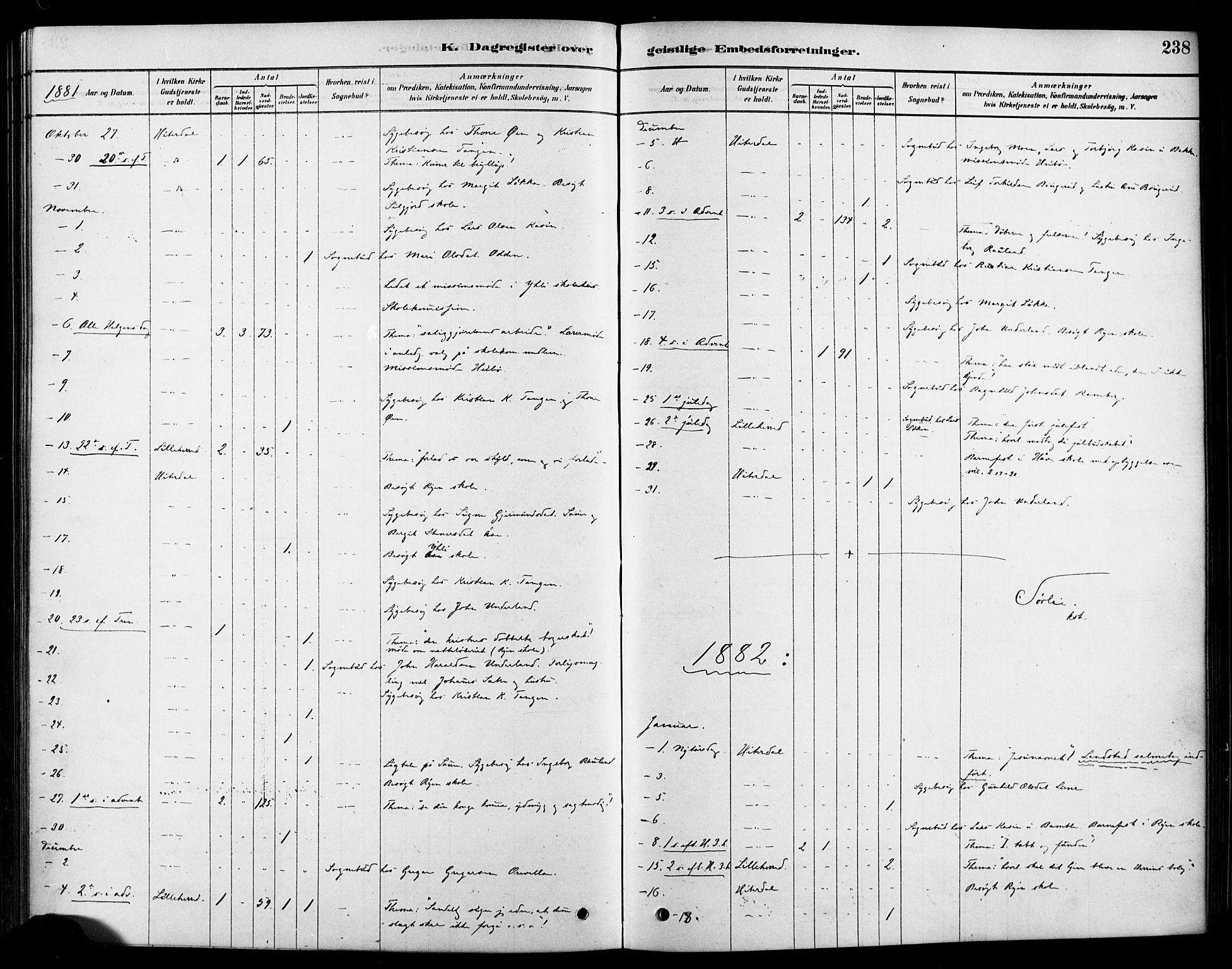 SAKO, Heddal kirkebøker, F/Fa/L0009: Ministerialbok nr. I 9, 1878-1903, s. 238