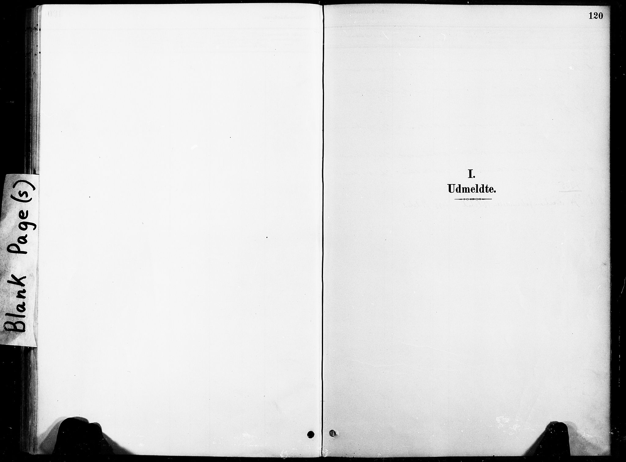 SAT, Ministerialprotokoller, klokkerbøker og fødselsregistre - Nord-Trøndelag, 738/L0364: Ministerialbok nr. 738A01, 1884-1902, s. 120
