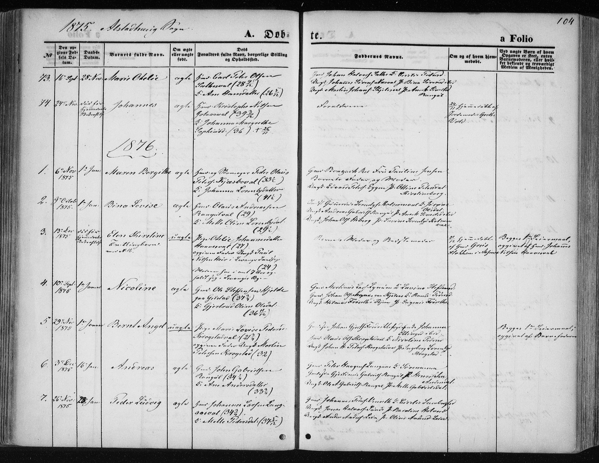SAT, Ministerialprotokoller, klokkerbøker og fødselsregistre - Nord-Trøndelag, 717/L0157: Ministerialbok nr. 717A08 /1, 1863-1877, s. 104