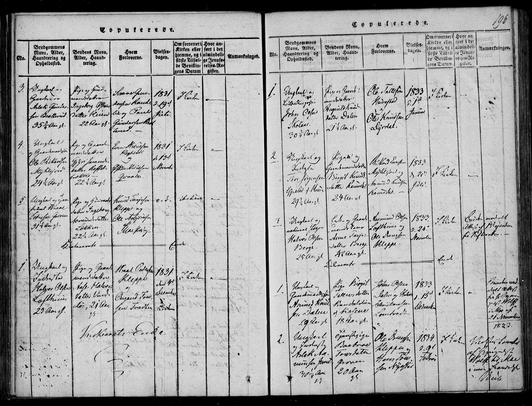 SAKO, Lårdal kirkebøker, F/Fb/L0001: Ministerialbok nr. II 1, 1815-1860, s. 196