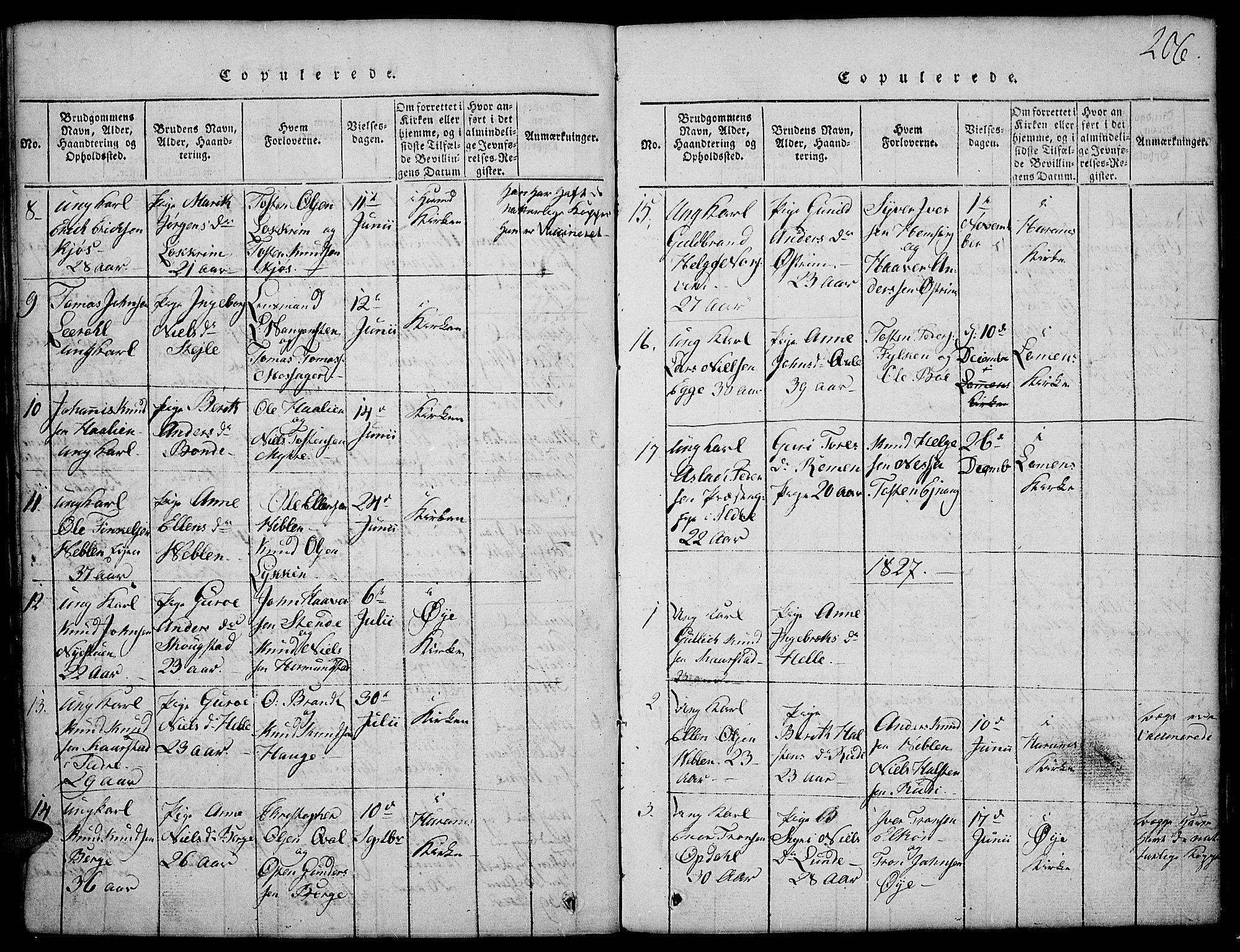 SAH, Vang prestekontor, Valdres, Klokkerbok nr. 2, 1814-1889, s. 206