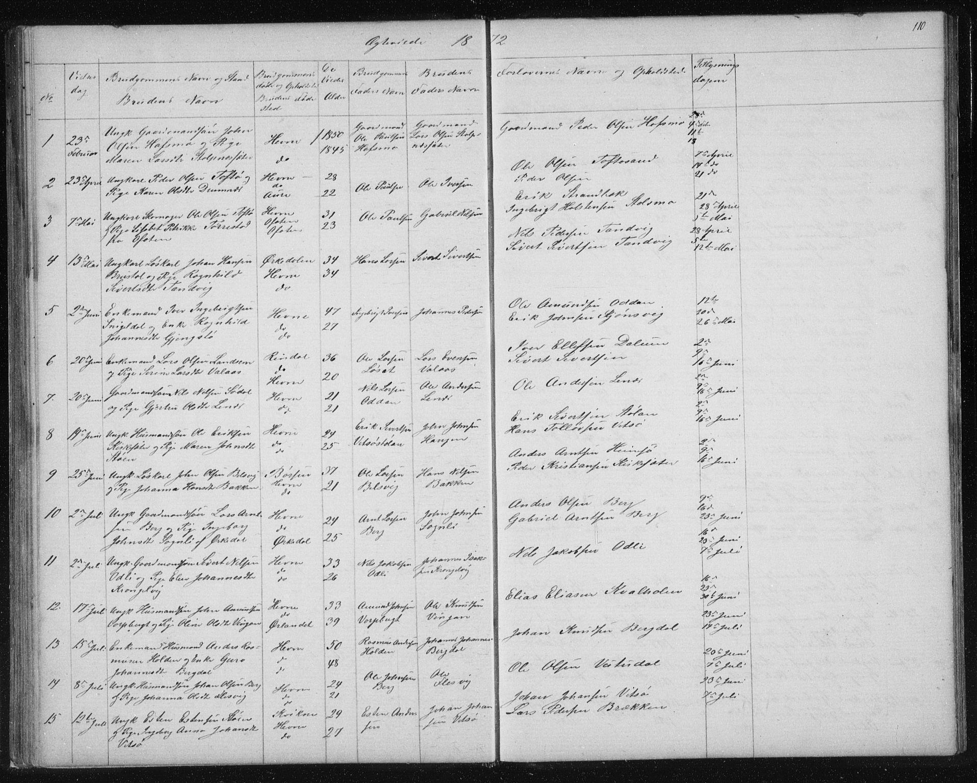 SAT, Ministerialprotokoller, klokkerbøker og fødselsregistre - Sør-Trøndelag, 630/L0503: Klokkerbok nr. 630C01, 1869-1878, s. 110