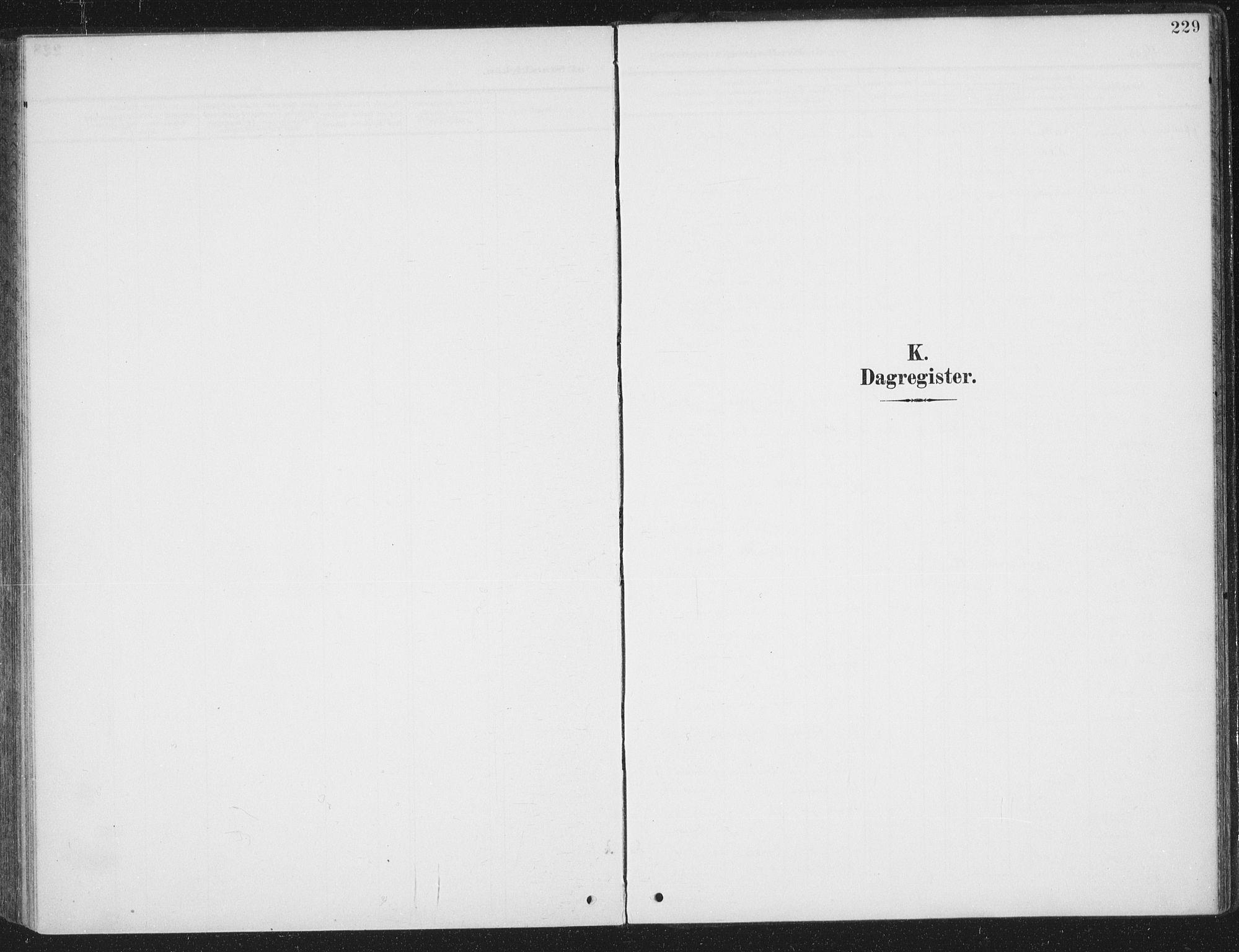 SAT, Ministerialprotokoller, klokkerbøker og fødselsregistre - Sør-Trøndelag, 657/L0709: Ministerialbok nr. 657A10, 1905-1919, s. 229