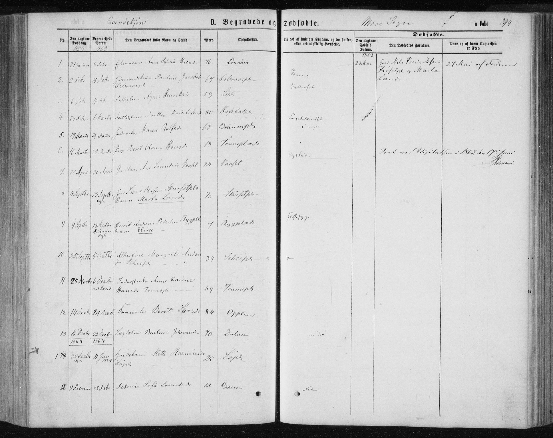 SAT, Ministerialprotokoller, klokkerbøker og fødselsregistre - Nord-Trøndelag, 735/L0345: Ministerialbok nr. 735A08 /1, 1863-1872, s. 294