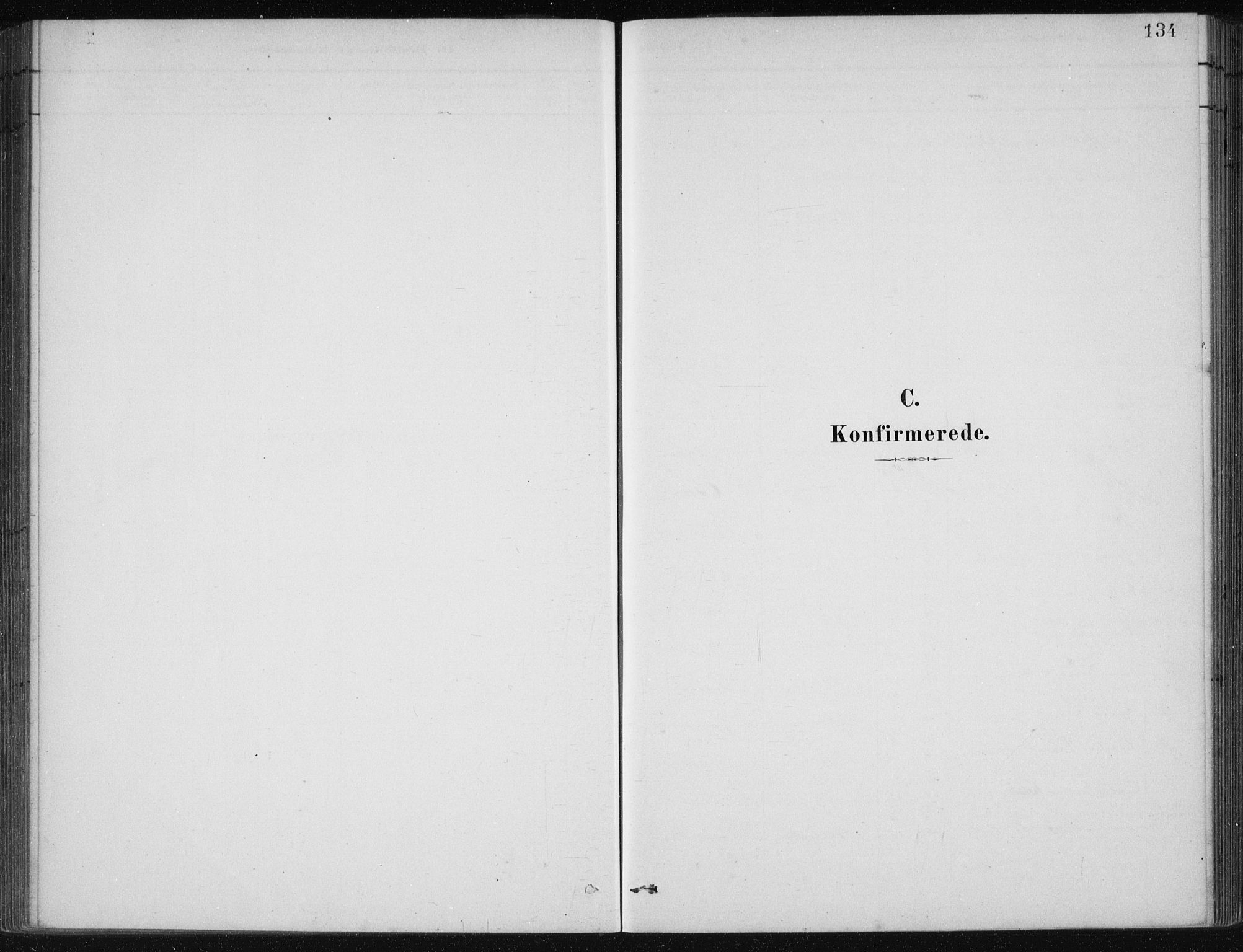 SAB, Etne Sokneprestembete, H/Haa: Ministerialbok nr. C  1, 1879-1919, s. 134