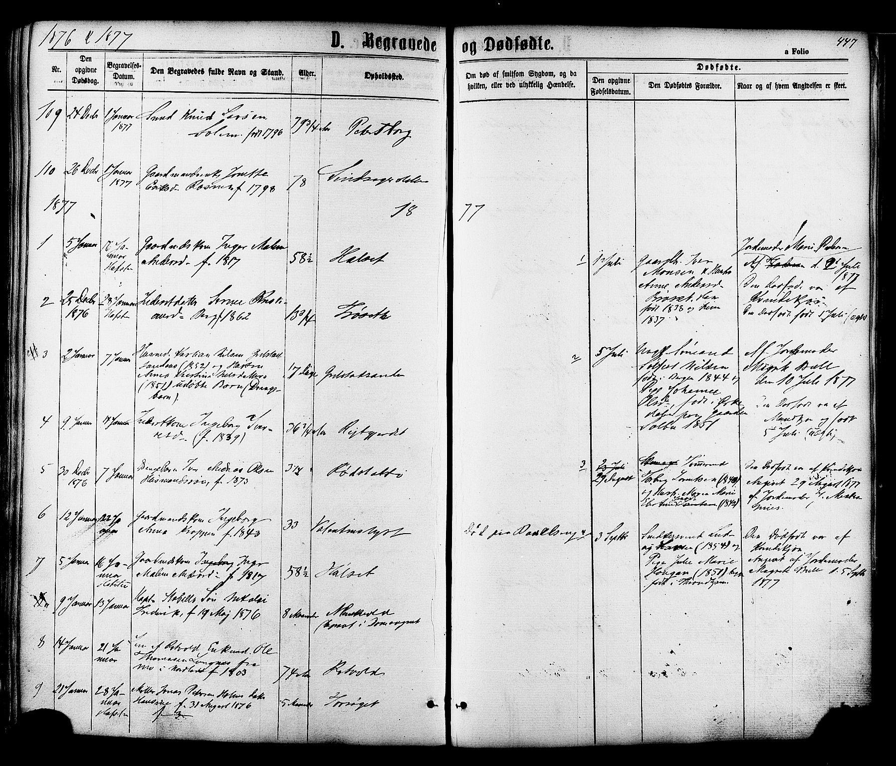 SAT, Ministerialprotokoller, klokkerbøker og fødselsregistre - Sør-Trøndelag, 606/L0293: Ministerialbok nr. 606A08, 1866-1877, s. 447