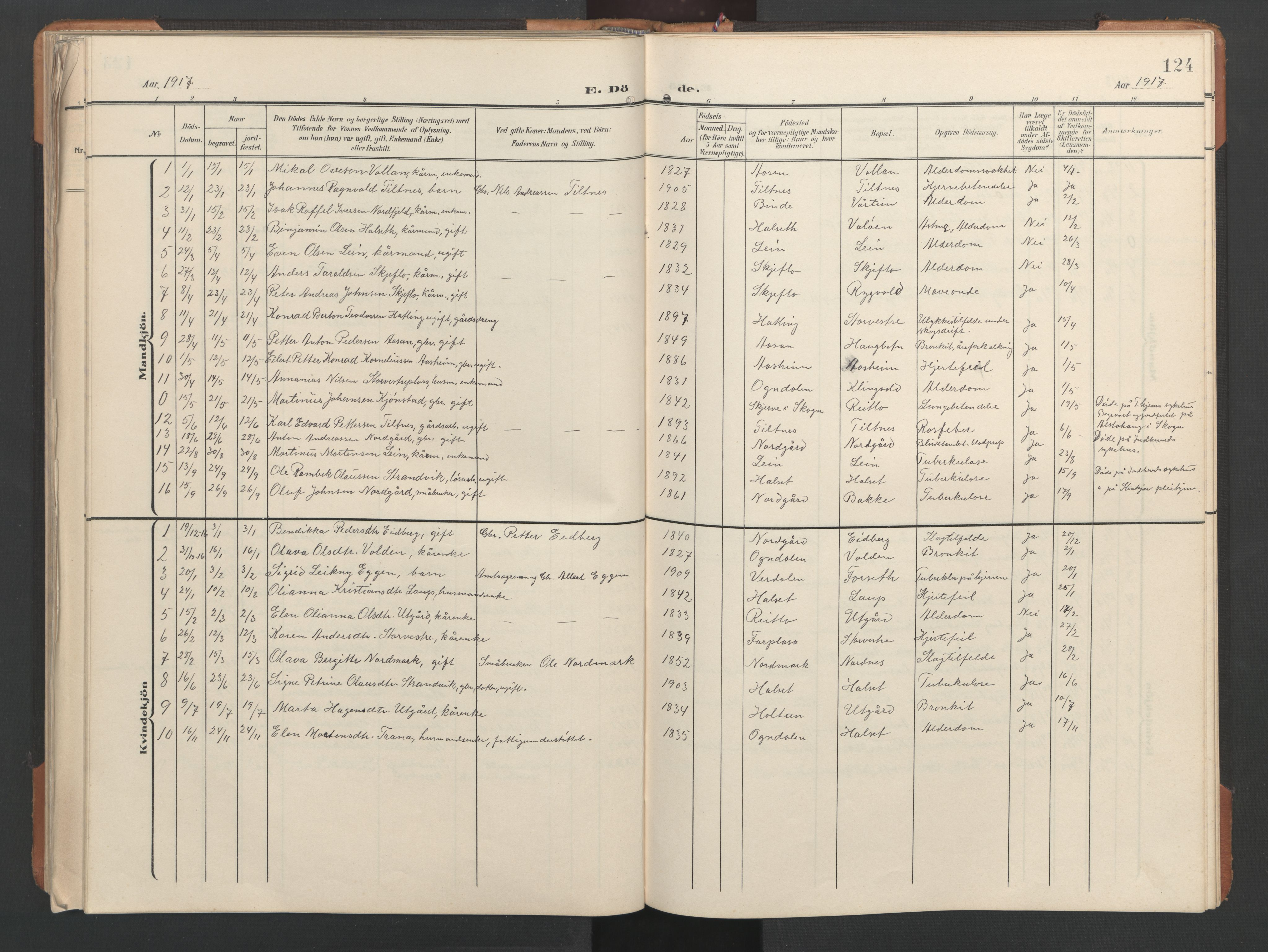SAT, Ministerialprotokoller, klokkerbøker og fødselsregistre - Nord-Trøndelag, 746/L0455: Klokkerbok nr. 746C01, 1908-1933, s. 124