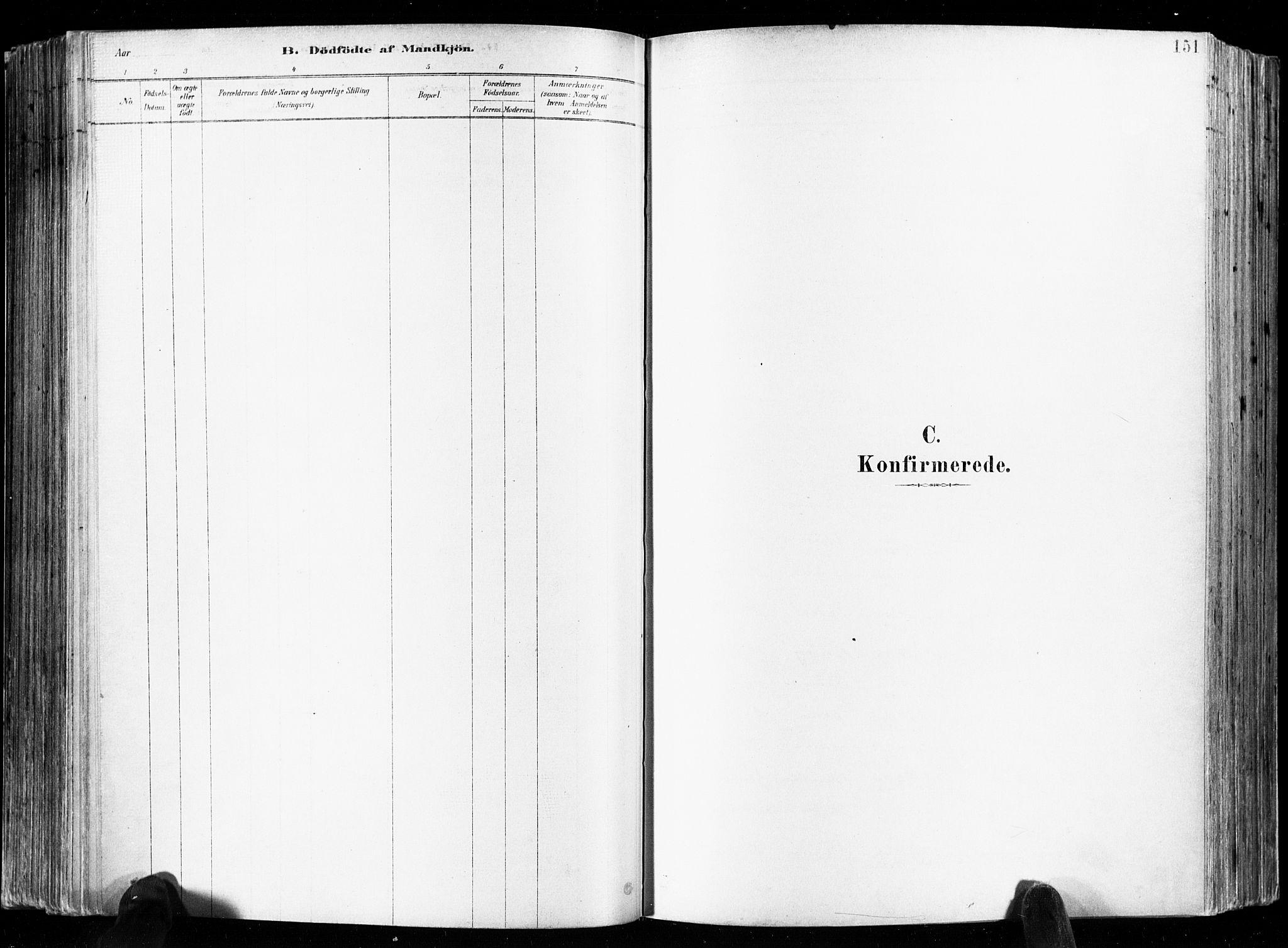 SAKO, Skien kirkebøker, F/Fa/L0009: Ministerialbok nr. 9, 1878-1890, s. 151