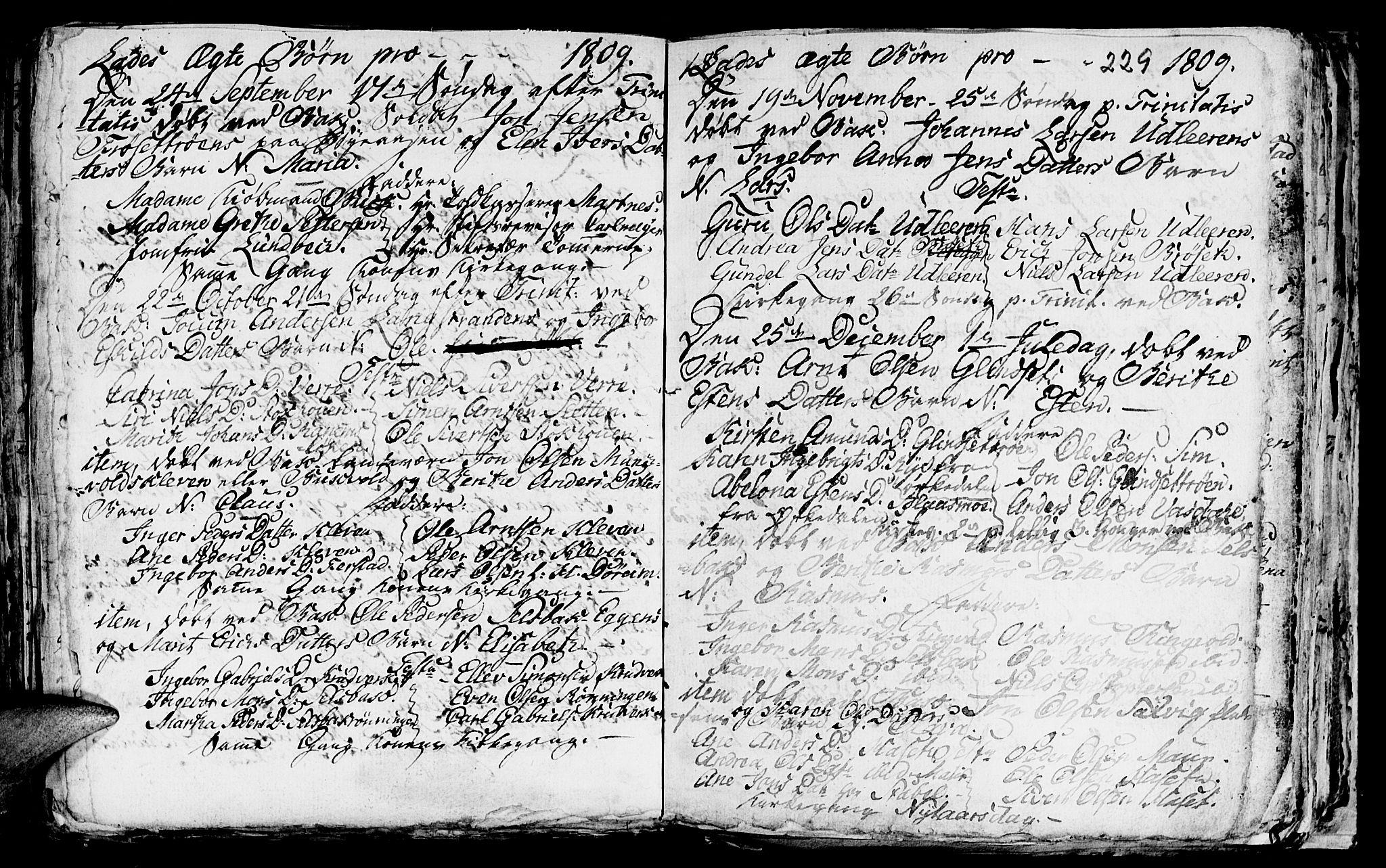 SAT, Ministerialprotokoller, klokkerbøker og fødselsregistre - Sør-Trøndelag, 606/L0305: Klokkerbok nr. 606C01, 1757-1819, s. 229