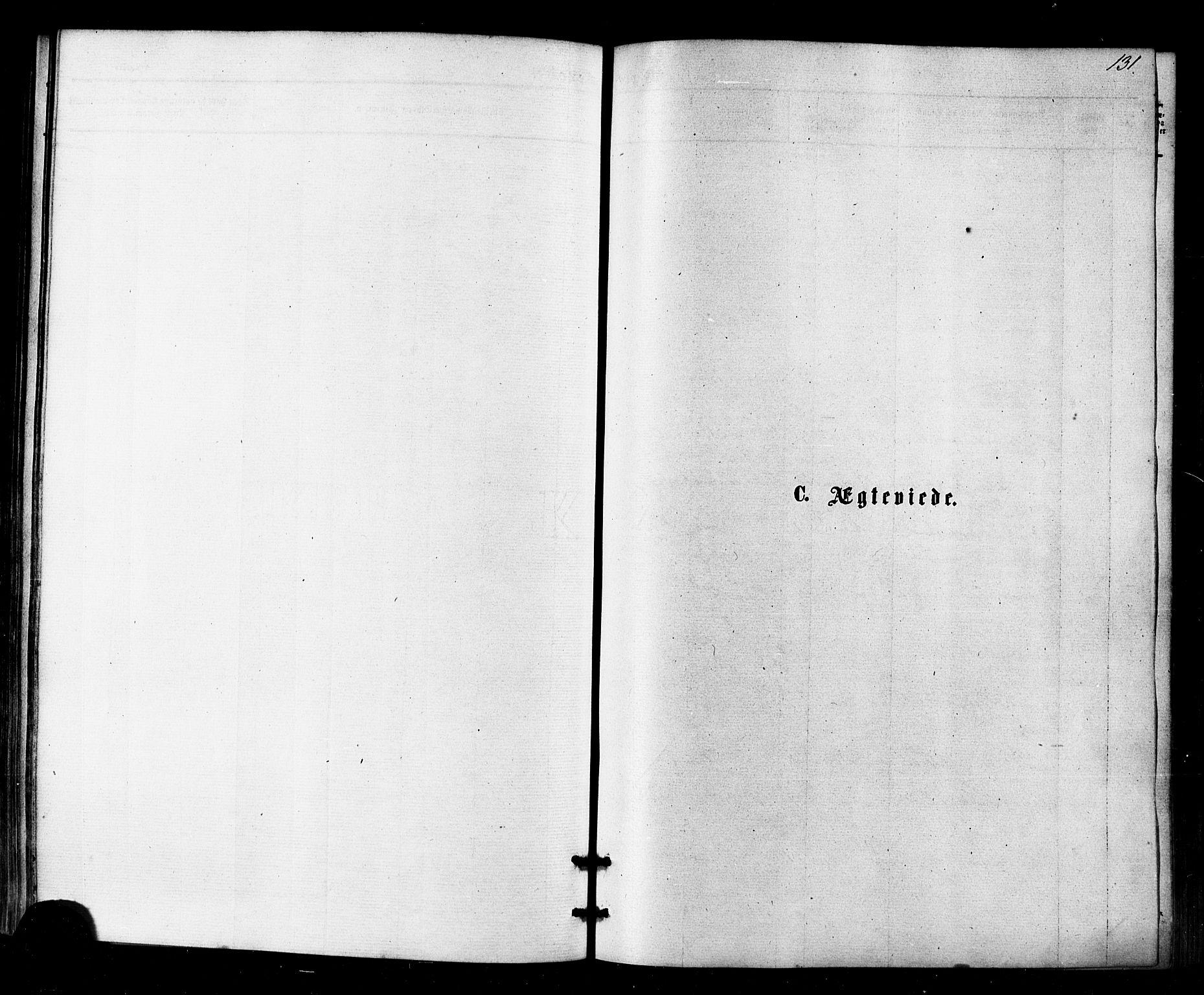 SATØ, Kistrand/Porsanger sokneprestembete, Ministerialbok nr. 6, 1875-1880, s. 131