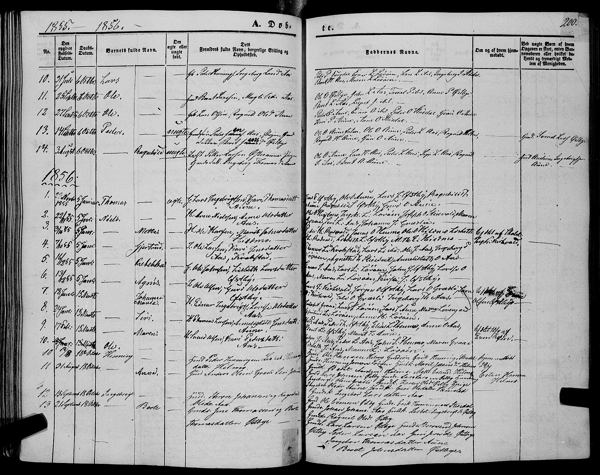 SAT, Ministerialprotokoller, klokkerbøker og fødselsregistre - Sør-Trøndelag, 695/L1146: Ministerialbok nr. 695A06 /2, 1843-1859, s. 200